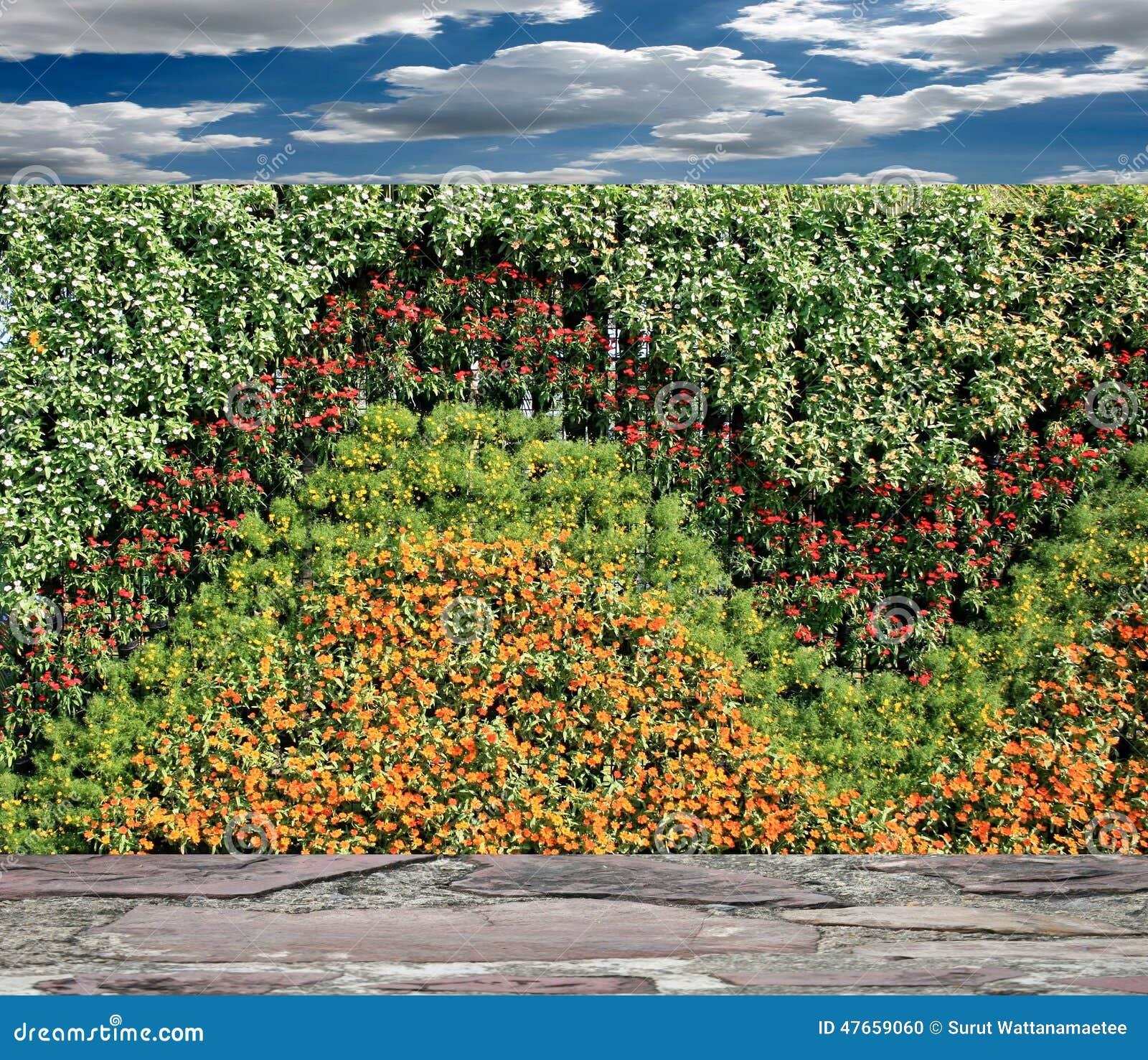 Flowers vertical garden wall royalty free stock - Giardino verticale madrid ...