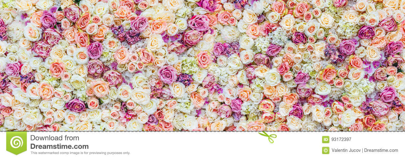 Download Flowers Wall Background With Amazing Red And White Roses, Wedding Decoration, Hand Made Stock Image - Image of floral, paint: 93172397