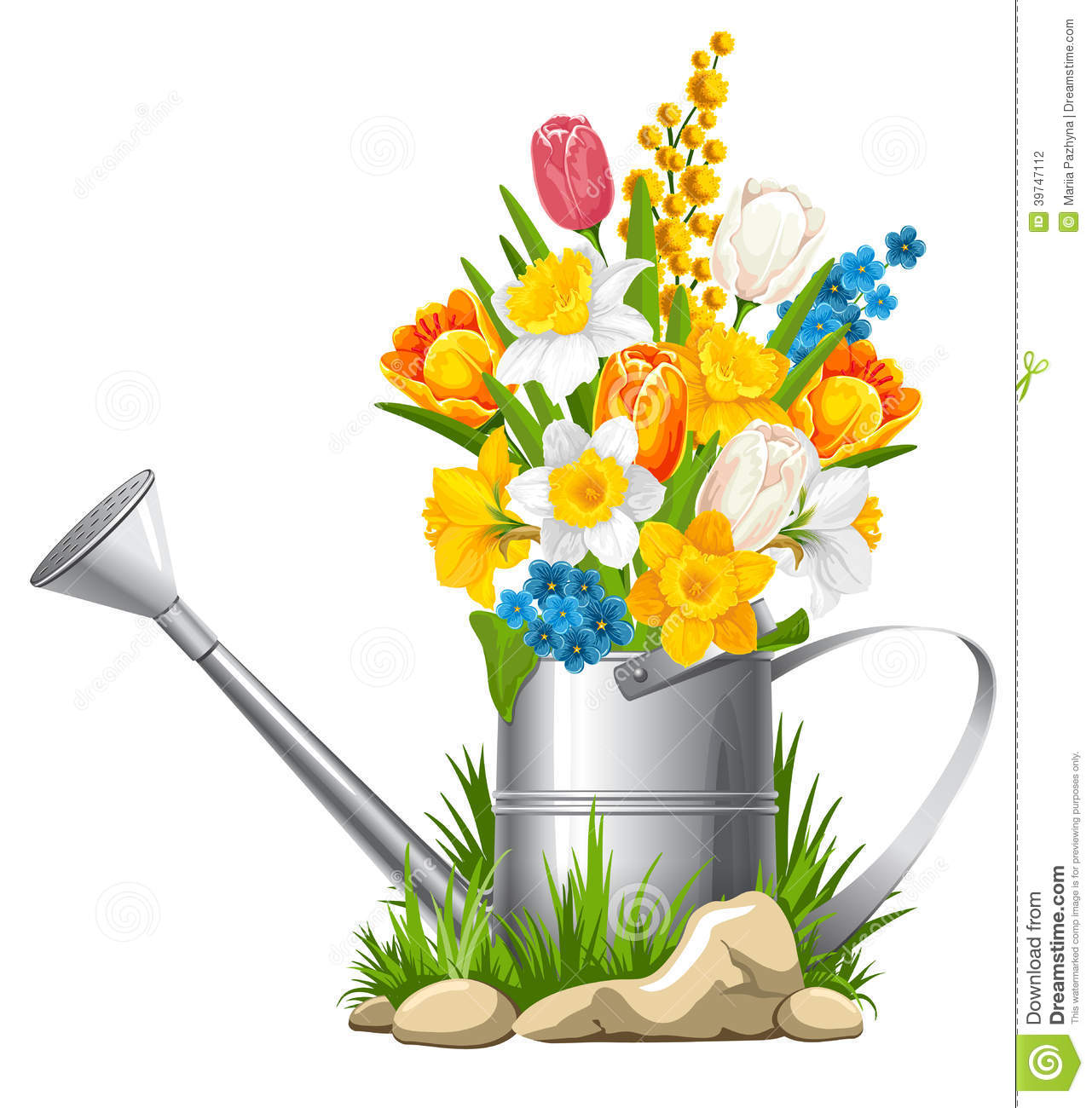 Flowers in watering can stock vector. Image of care ...