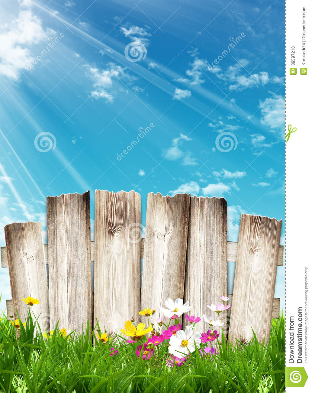 Wooden Fence And Spring Flowers