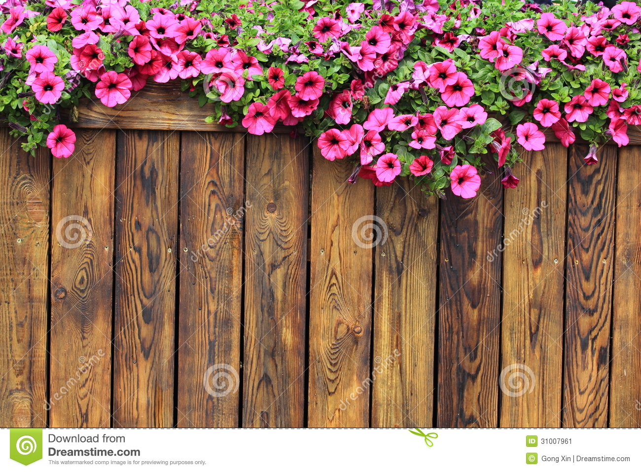 Flowers Wood Texture Background Stock Image
