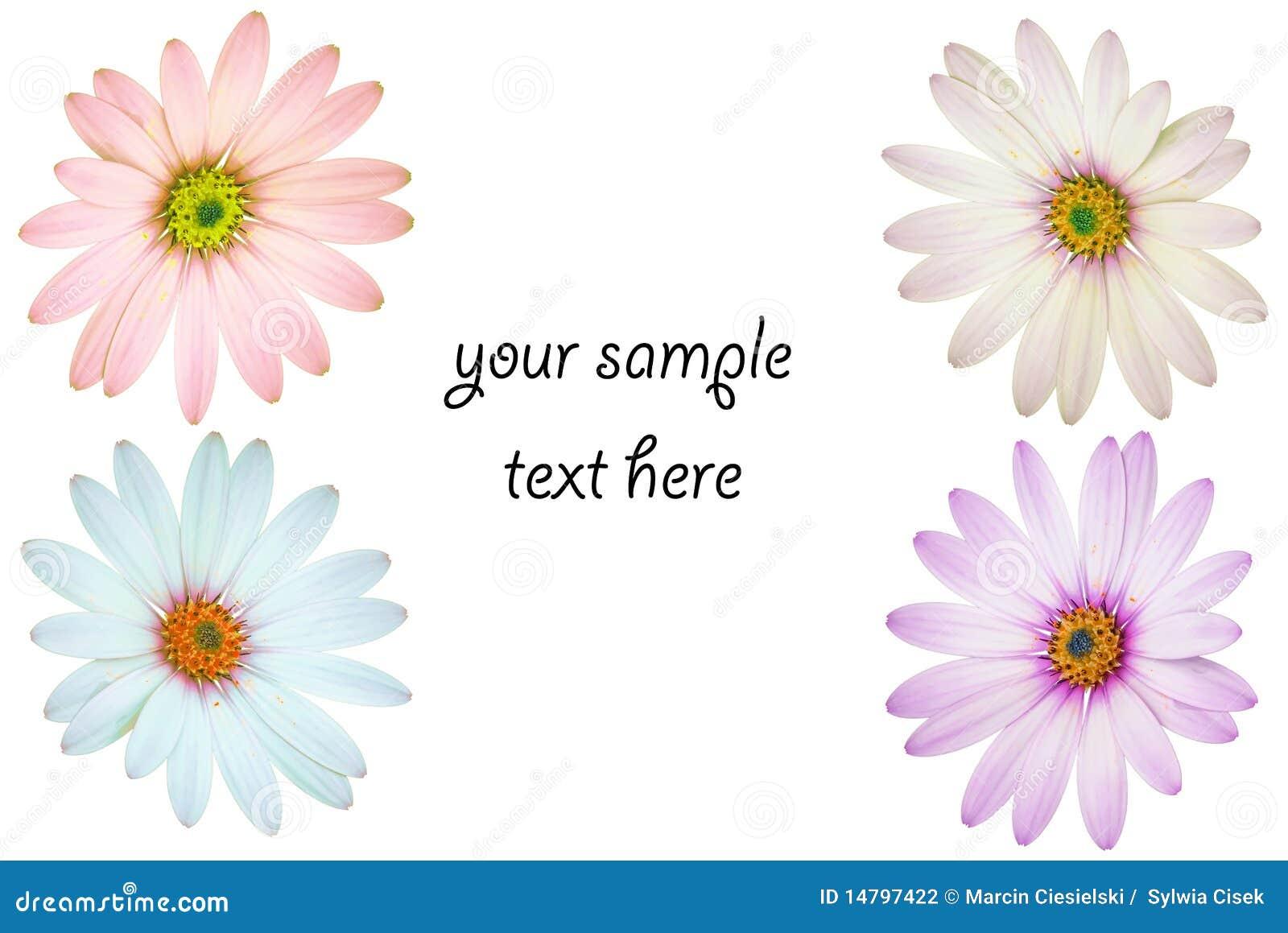 Flowery template stock photo. Image of flower, season - 14797422