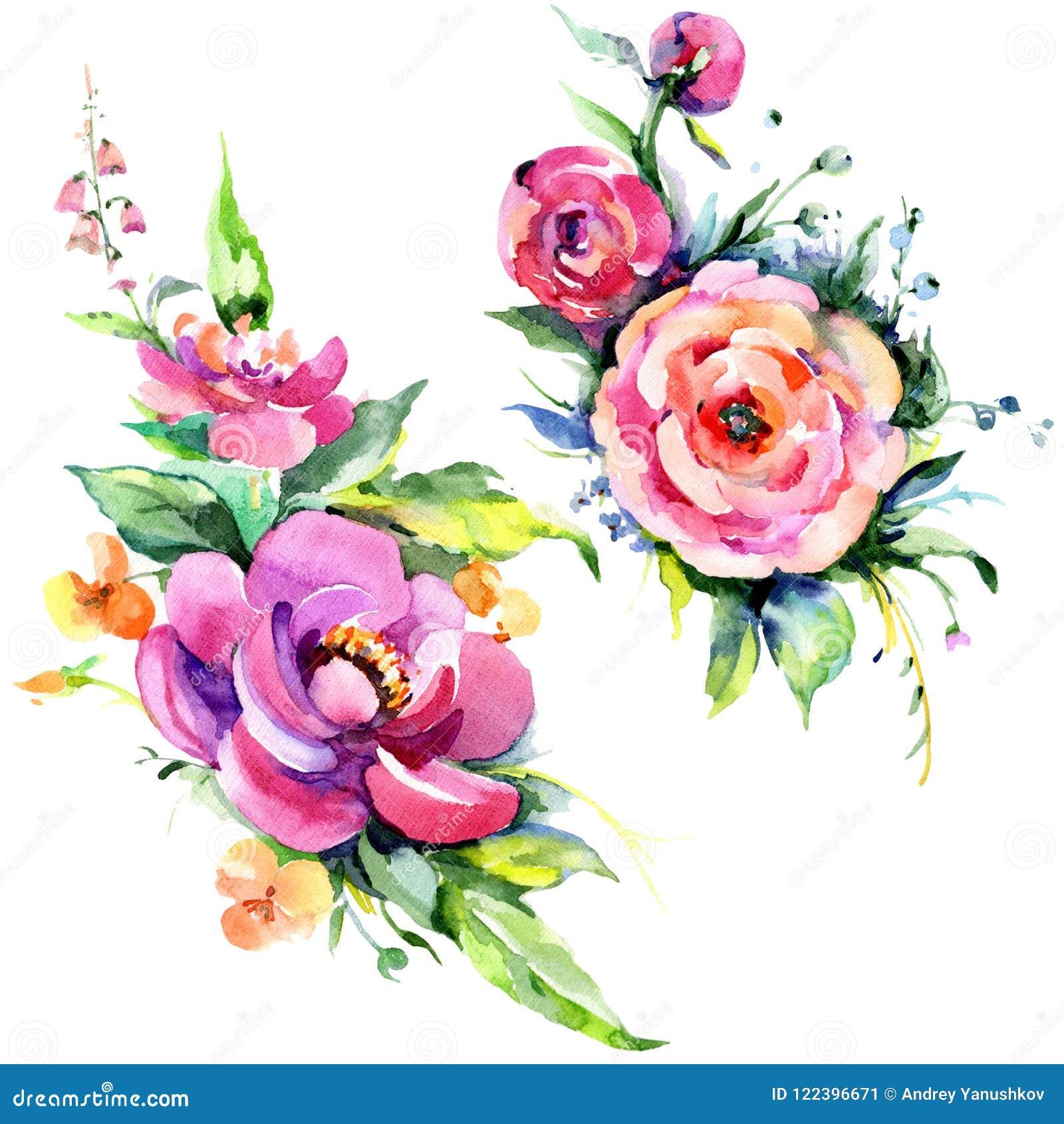 Flowes da peônia do rosa do ramalhete da aquarela Flor botânica floral Elemento isolado da ilustração