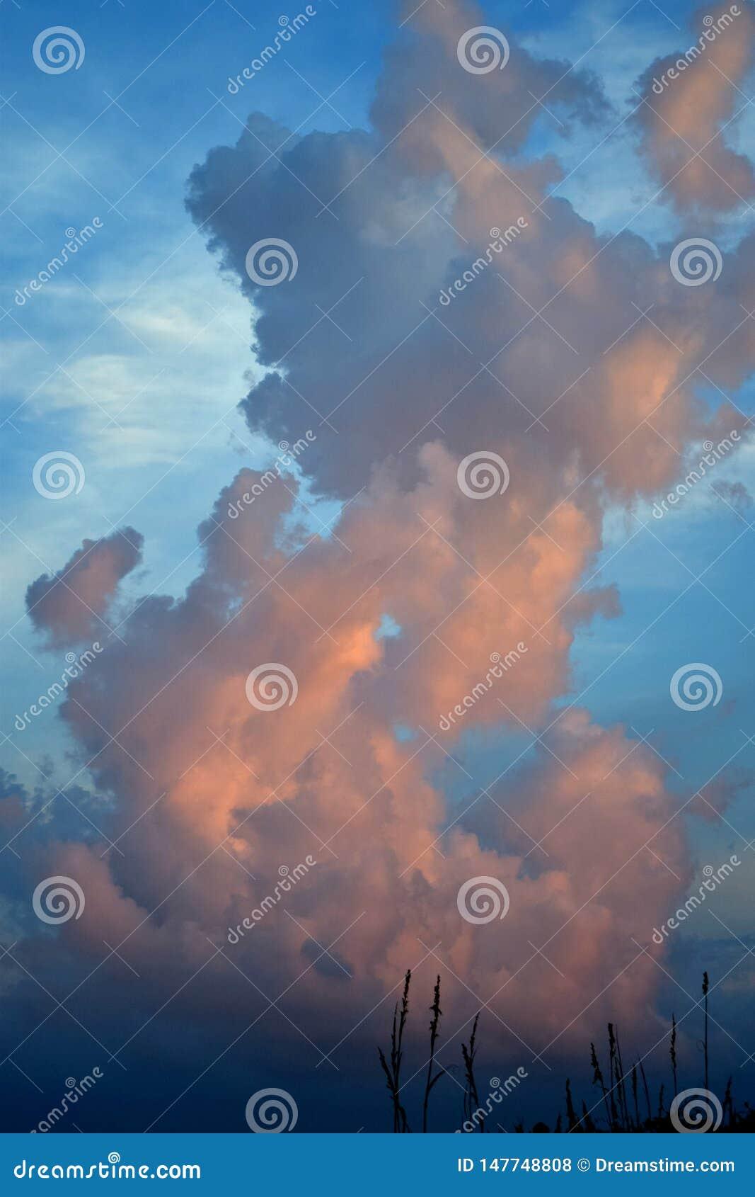 Fluffy cloud illuminated by the evening sun