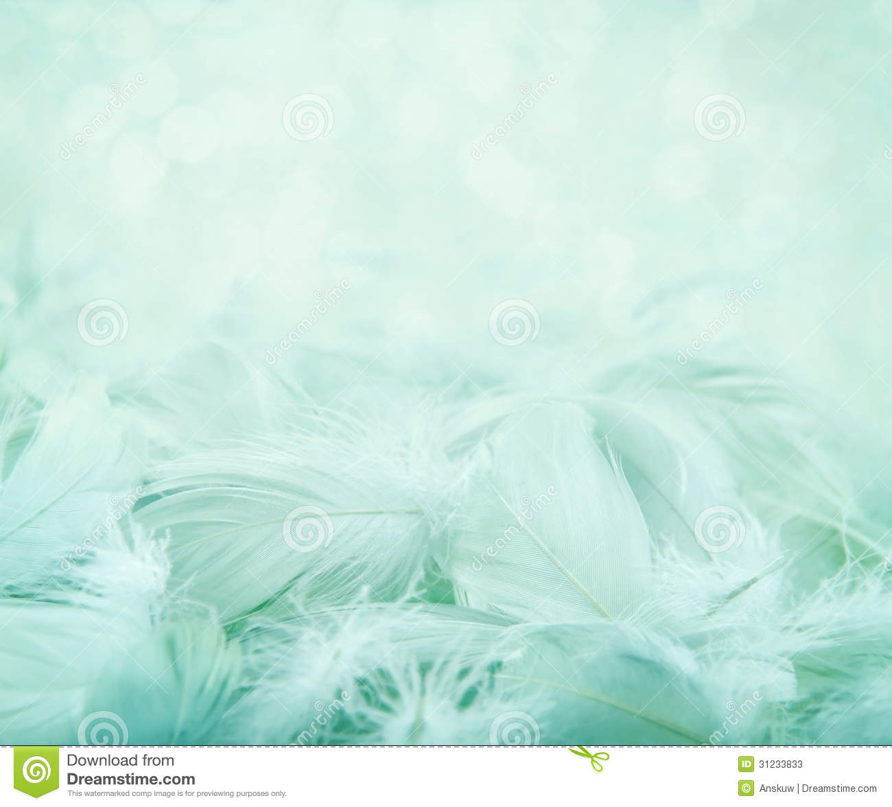 fluffy feathers on turquoise blurry background stock image