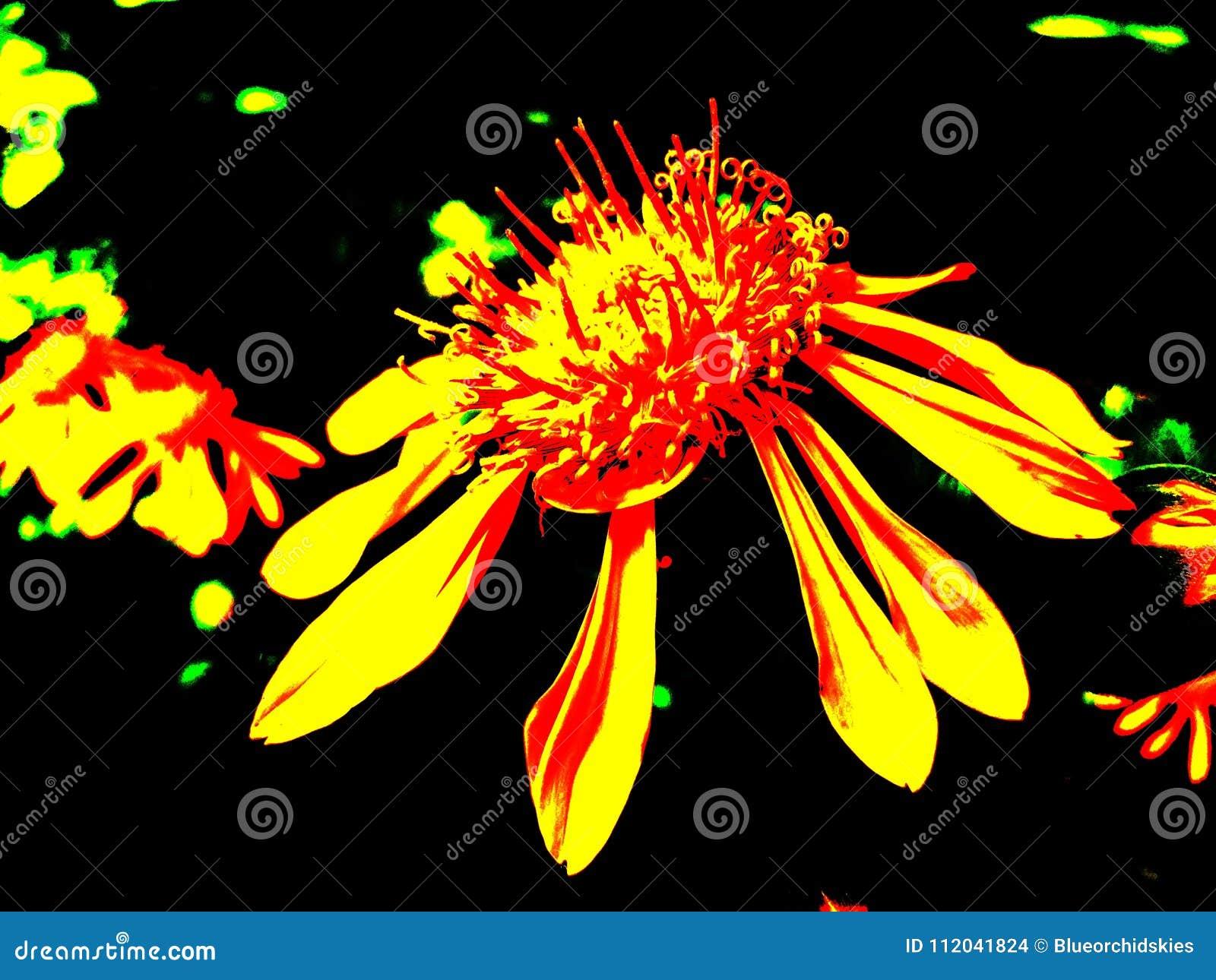 Fluorescent flower clipart
