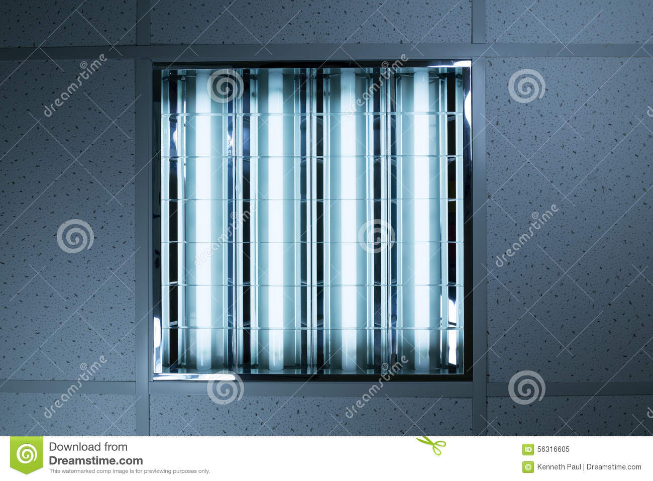 Fluorescent Lights In Office Ceiling Stock Image Image