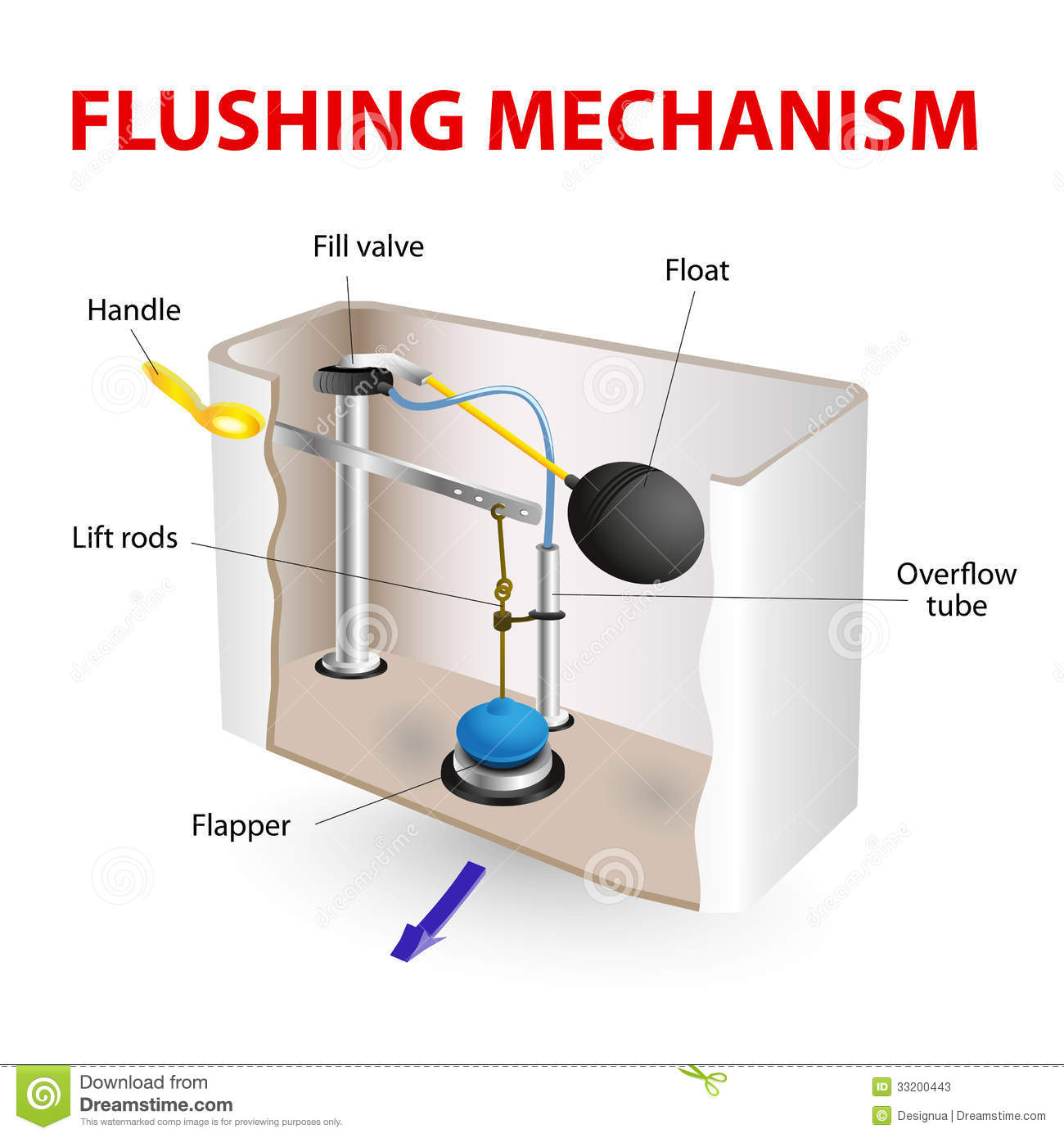 Flushing Mechanism Flush Toilet Stock Photos Image 33200443