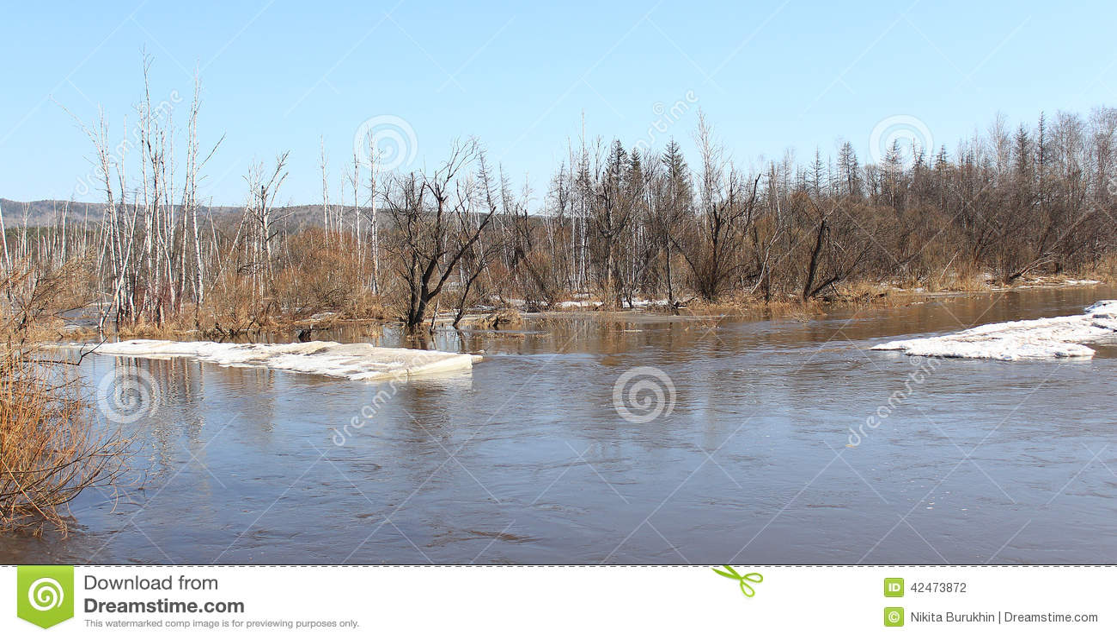 Fluss Barga nachdem dem Öffnen in Zelenogorsk