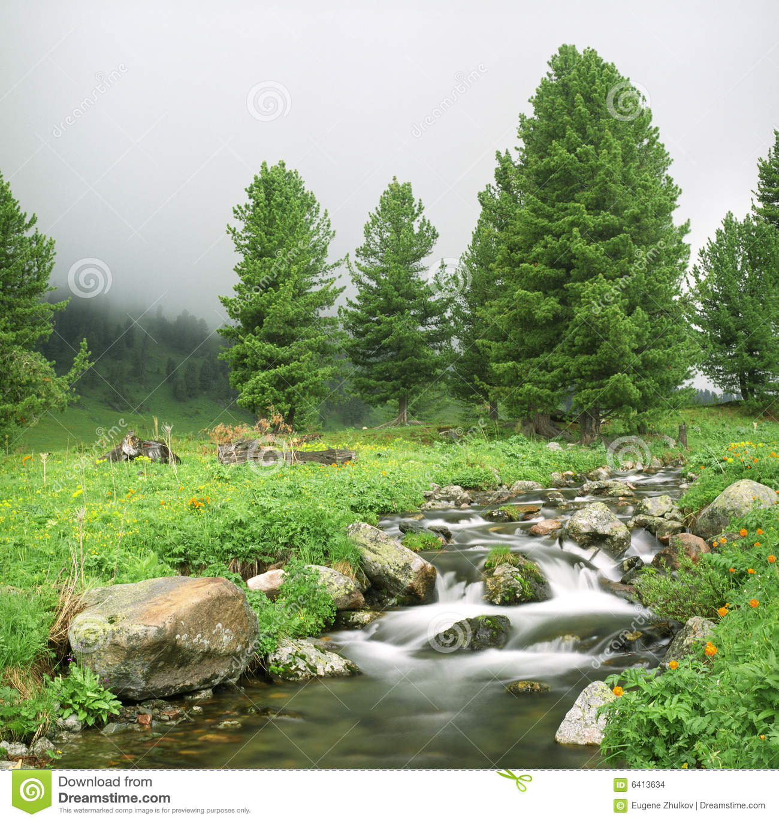 Flussfluß in hohe Berge