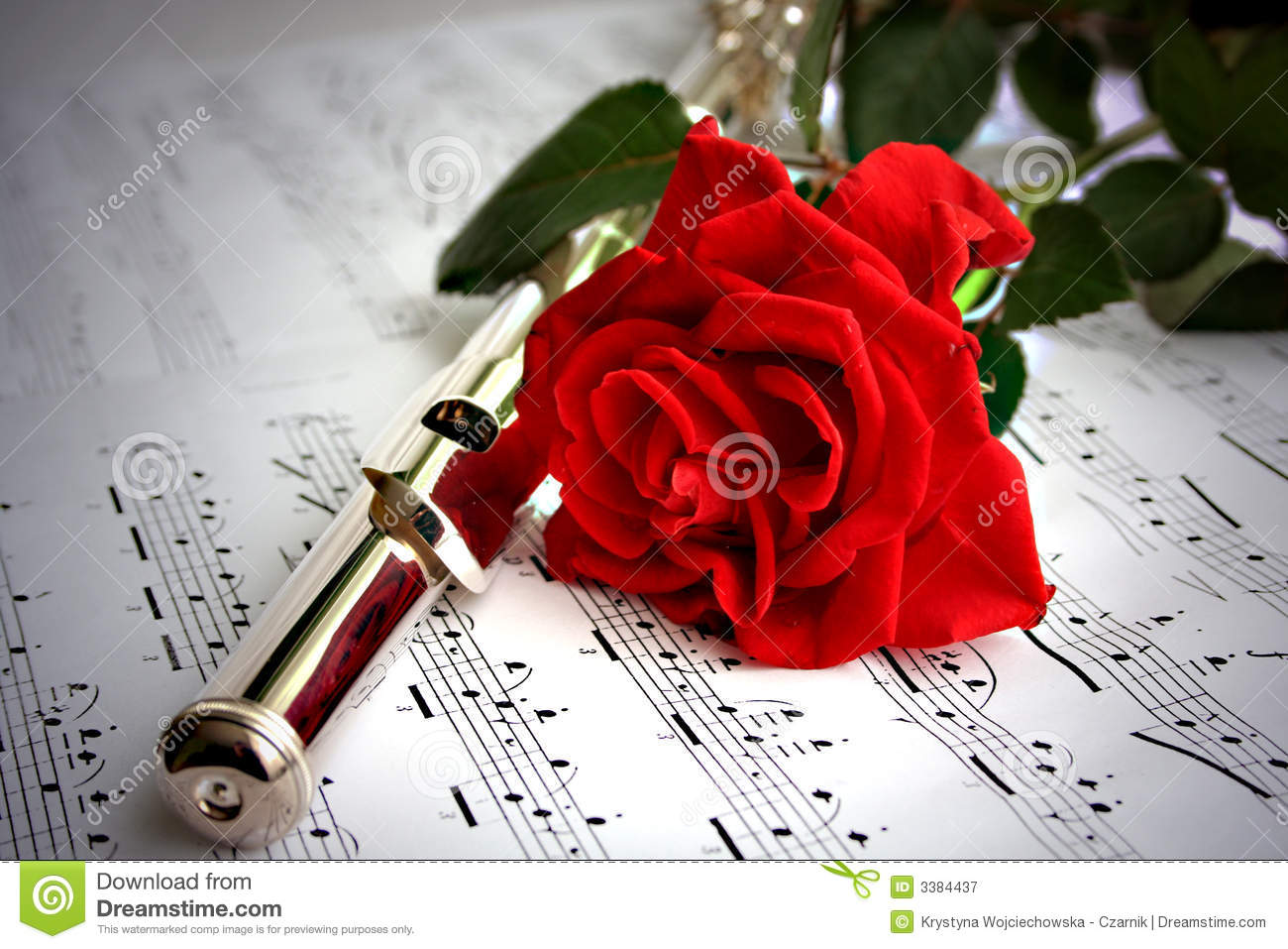 Flute Royalty Free Stock Photography Image 3384437