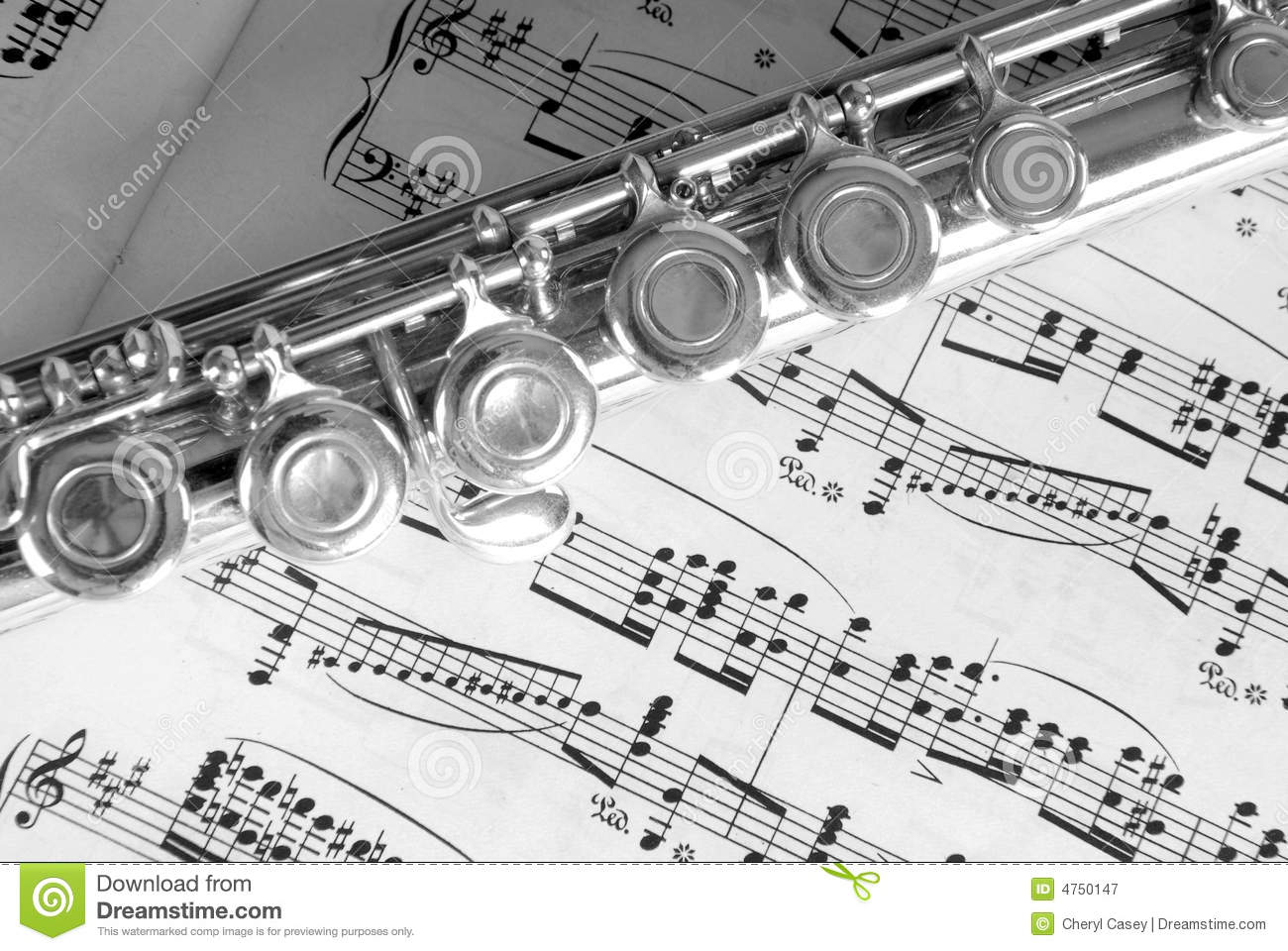 music sheet flute fluit op het photography muziek blad royalty notes classical artistic band preview
