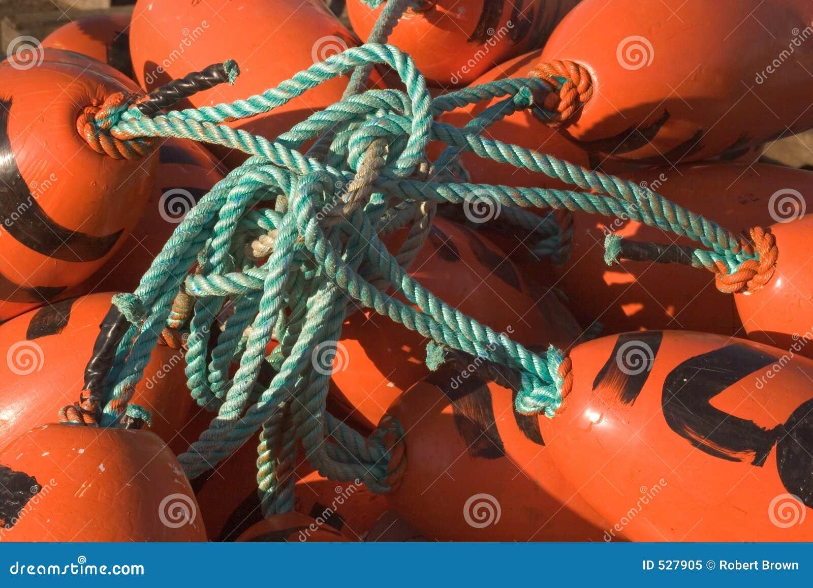 Flutuadores Tangled