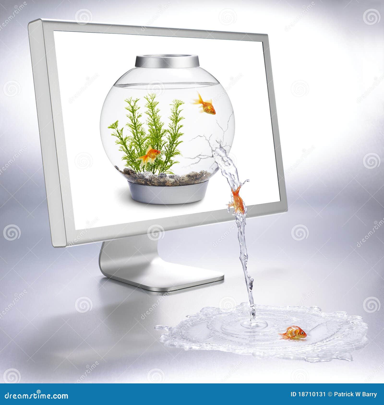 Flux de Fishbowl