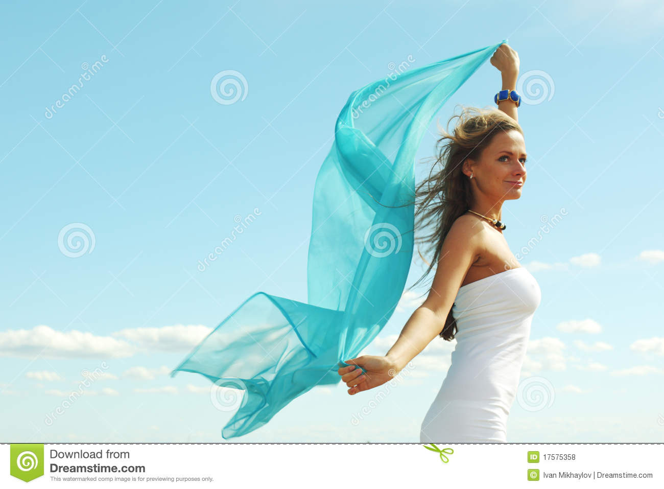 Fly Away Royalty Free Stock Photos - Image: 17575358