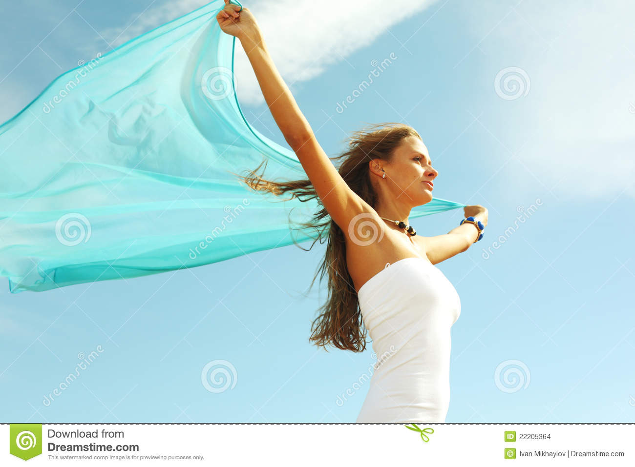 Fly Away Stock Images - Image: 22205364