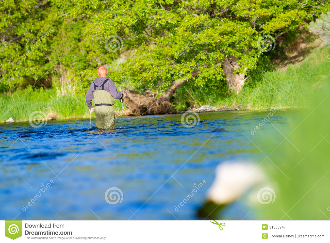 Fly fisherman deschutes river royalty free stock for Oregon free fishing