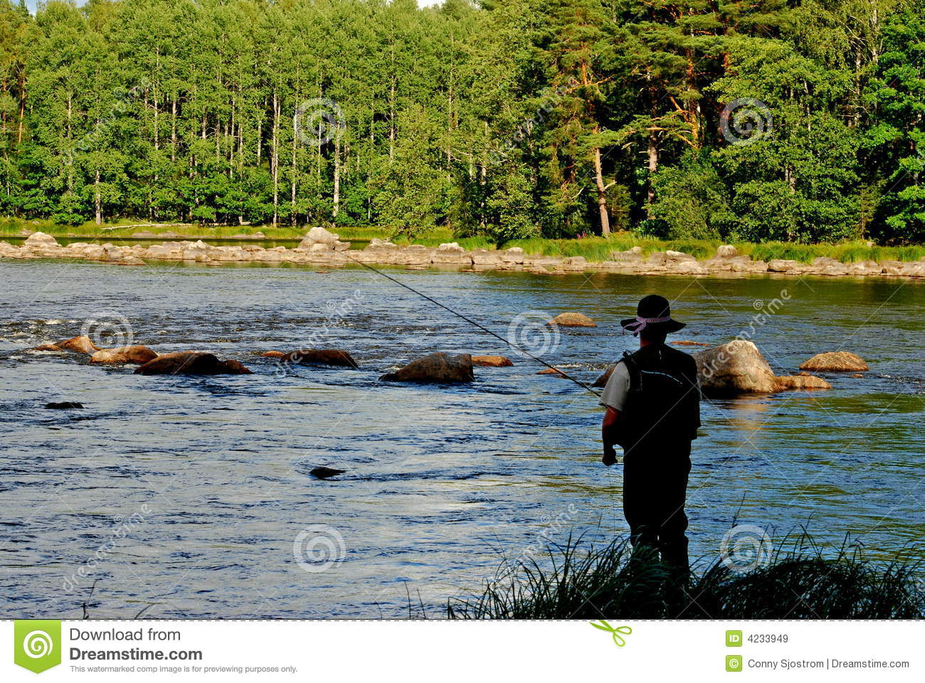 Fly Fishing From The Bank Royalty Free Stock Images Image 4233949