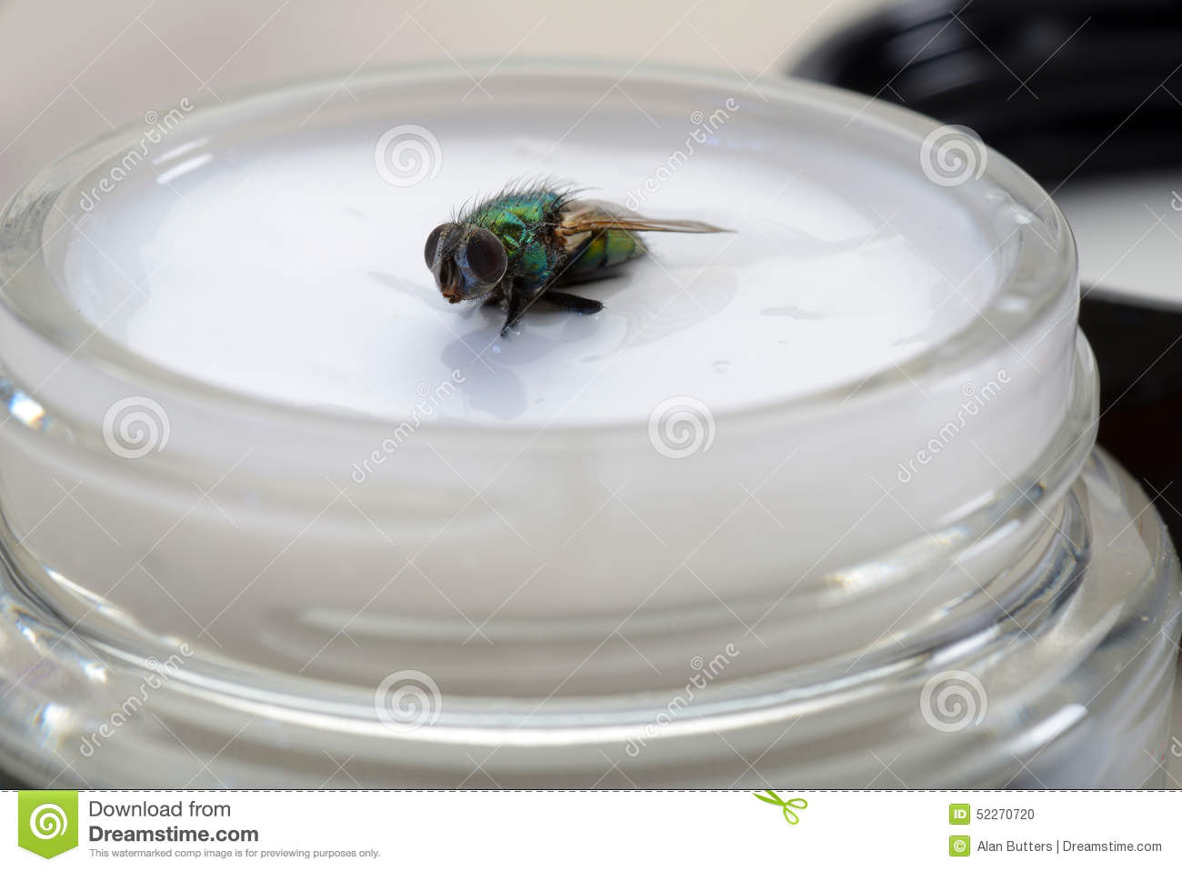 the fly in the ointment If someone or something is a fly in the ointment, they prevent a situation from being as successful or happy as it would be without them the only fly in the ointment is bella's chronic lack of concentration one potentially large fly in the ointment is how radio resources have been split up worldwide note: this expression.
