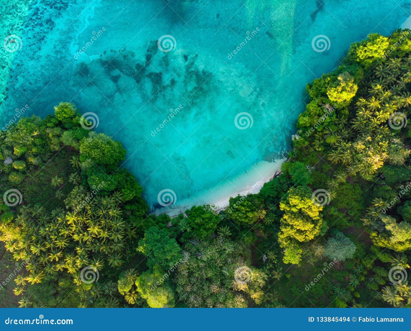 Flyg- överkant ner lagun för tropisk för paradis för sikt den blåa ursprunglig rainforest för strand på Banda Island, Pulau Ay In