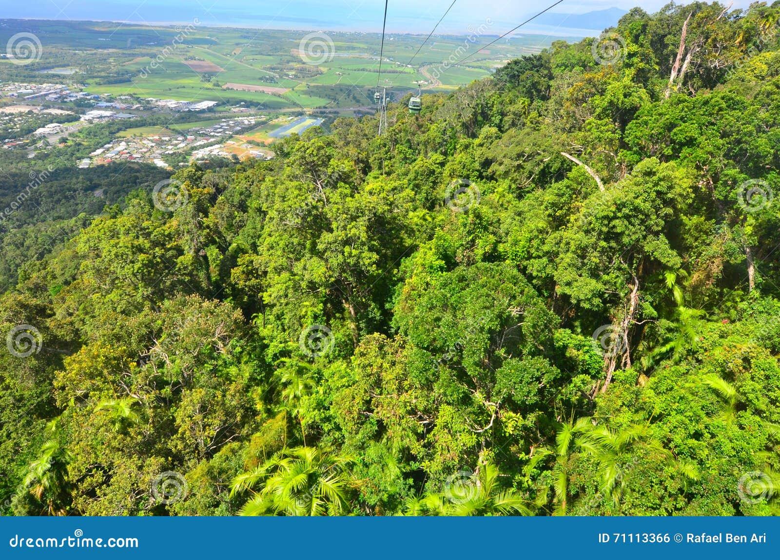 Flyg- landskapsikt av Barron Gorge National Park i Queenslan