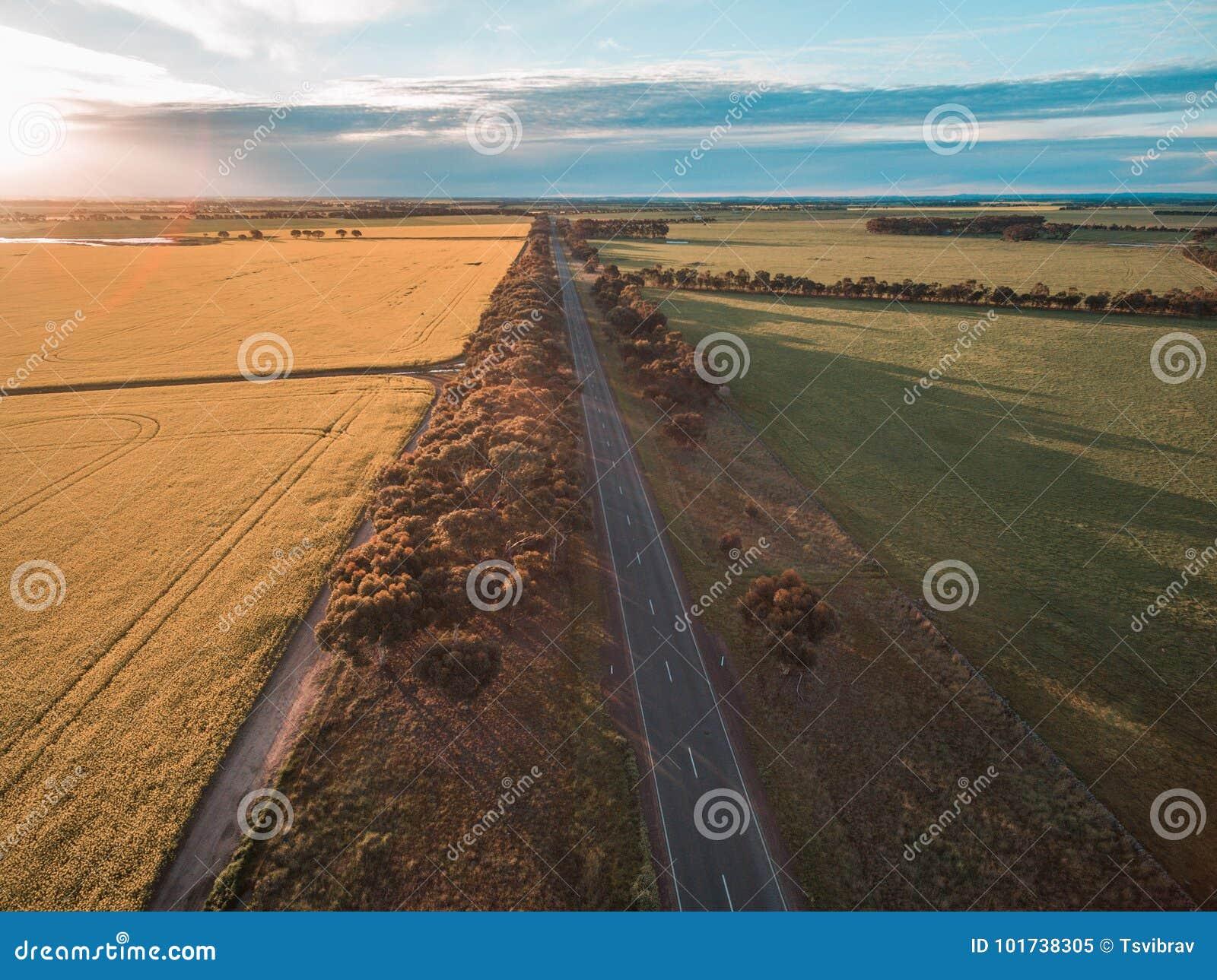 Flyg- sikt av den lantliga vägbortgången till och med jordbruks- land i australisk bygd på solnedgången