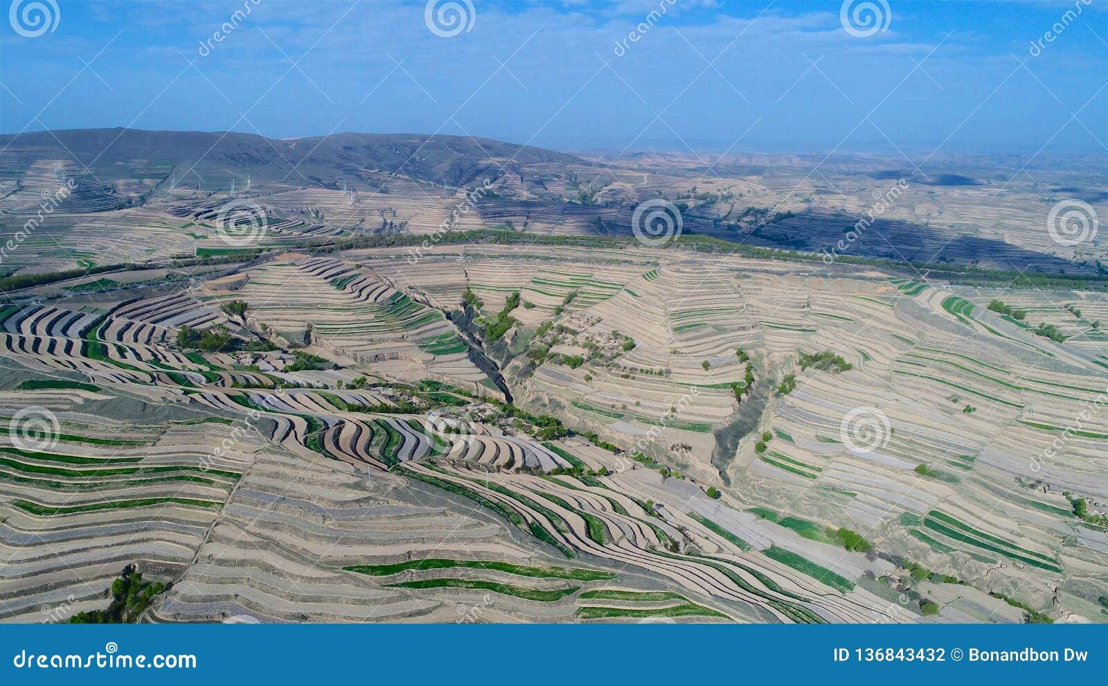 Flyg- sikt av kullar för lantgårdfält, terrasserad dal med massiv agricutlure