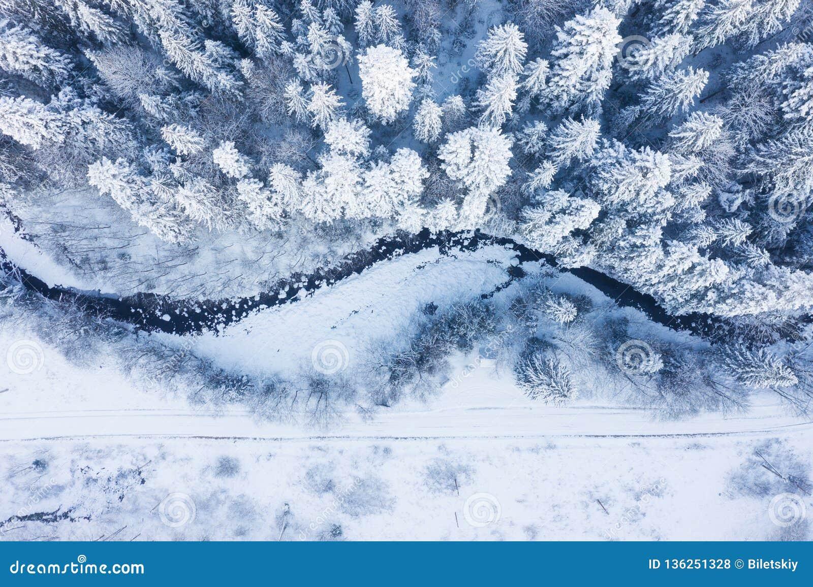 Flyg- sikt på floden och skogen på vintertiden Naturligt vinterlandskap från luft Skog under snö a vintertiden