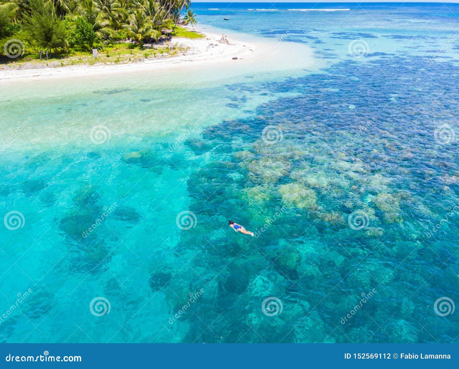 Flyg- ?verkant ner folk som snorklar p? det tropiska karibiska havet f?r korallrev, turkosbl?tt vatten Indonesien Banyak ?ar Suma