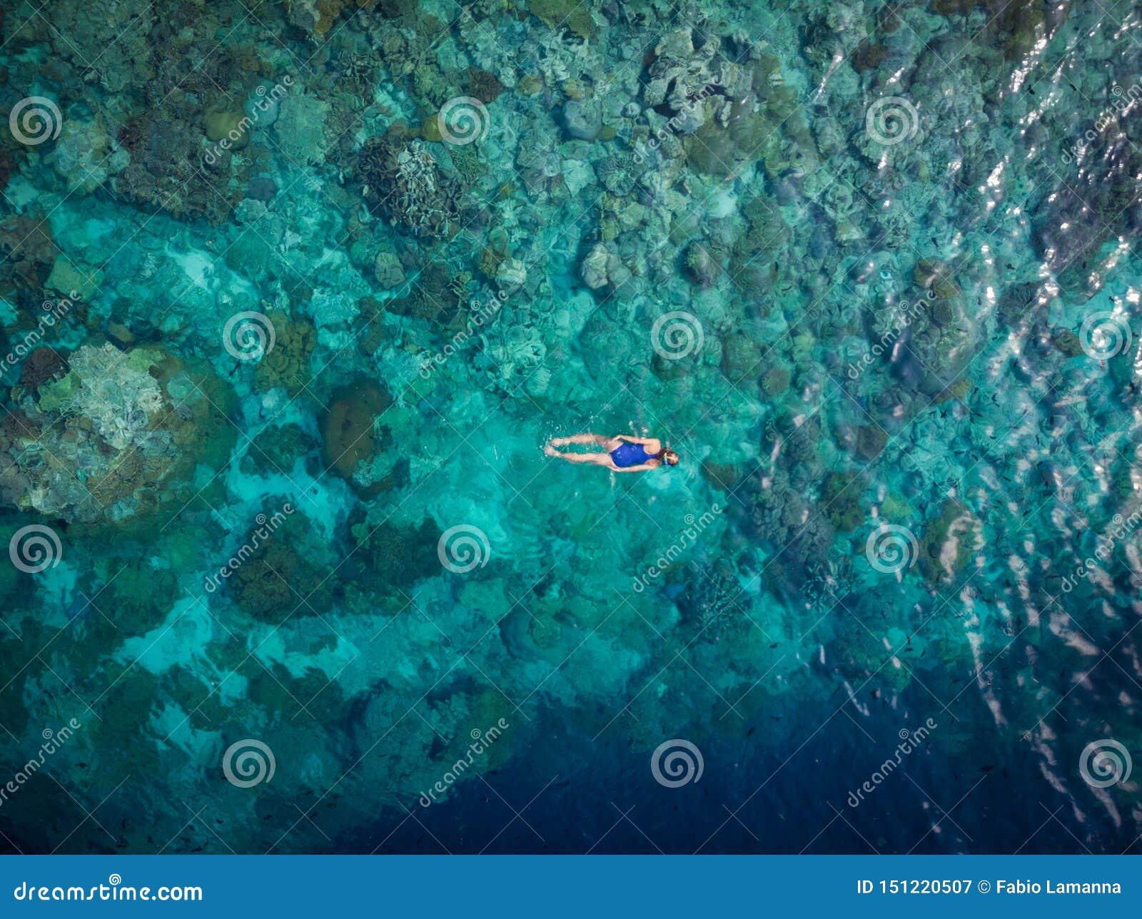 Flyg- ?verkant ner folk som snorklar p? det tropiska karibiska havet f?r korallrev, turkosbl?tt vatten Indonesien Wakatobi sk?rg?