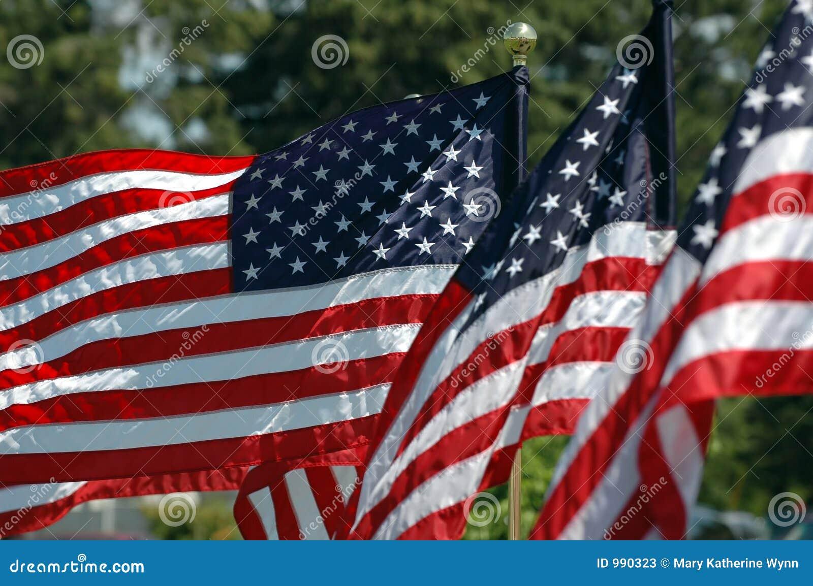 Flyga för flaggor