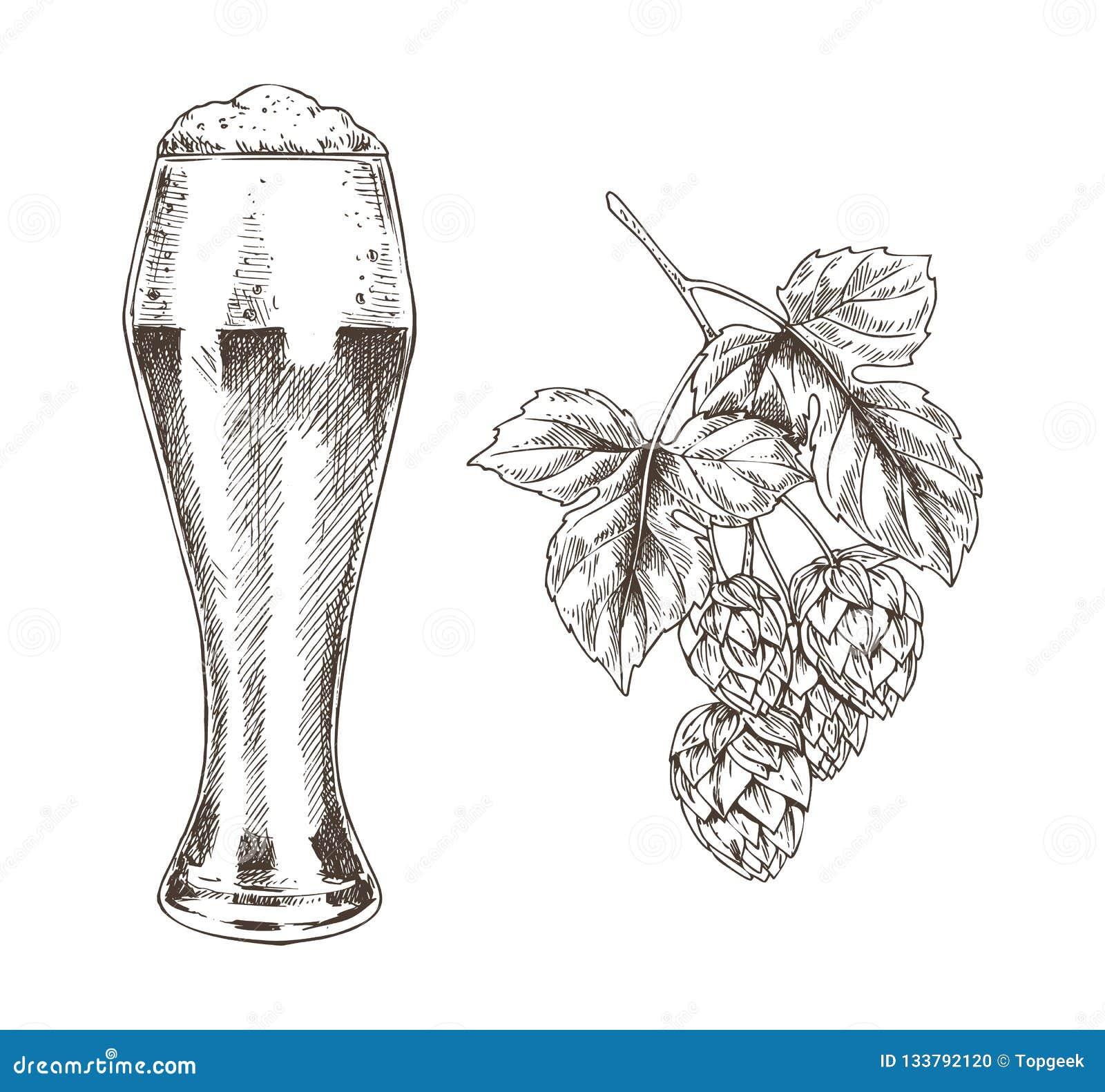 Flygturfrunch och illustration för ölbägarevektor
