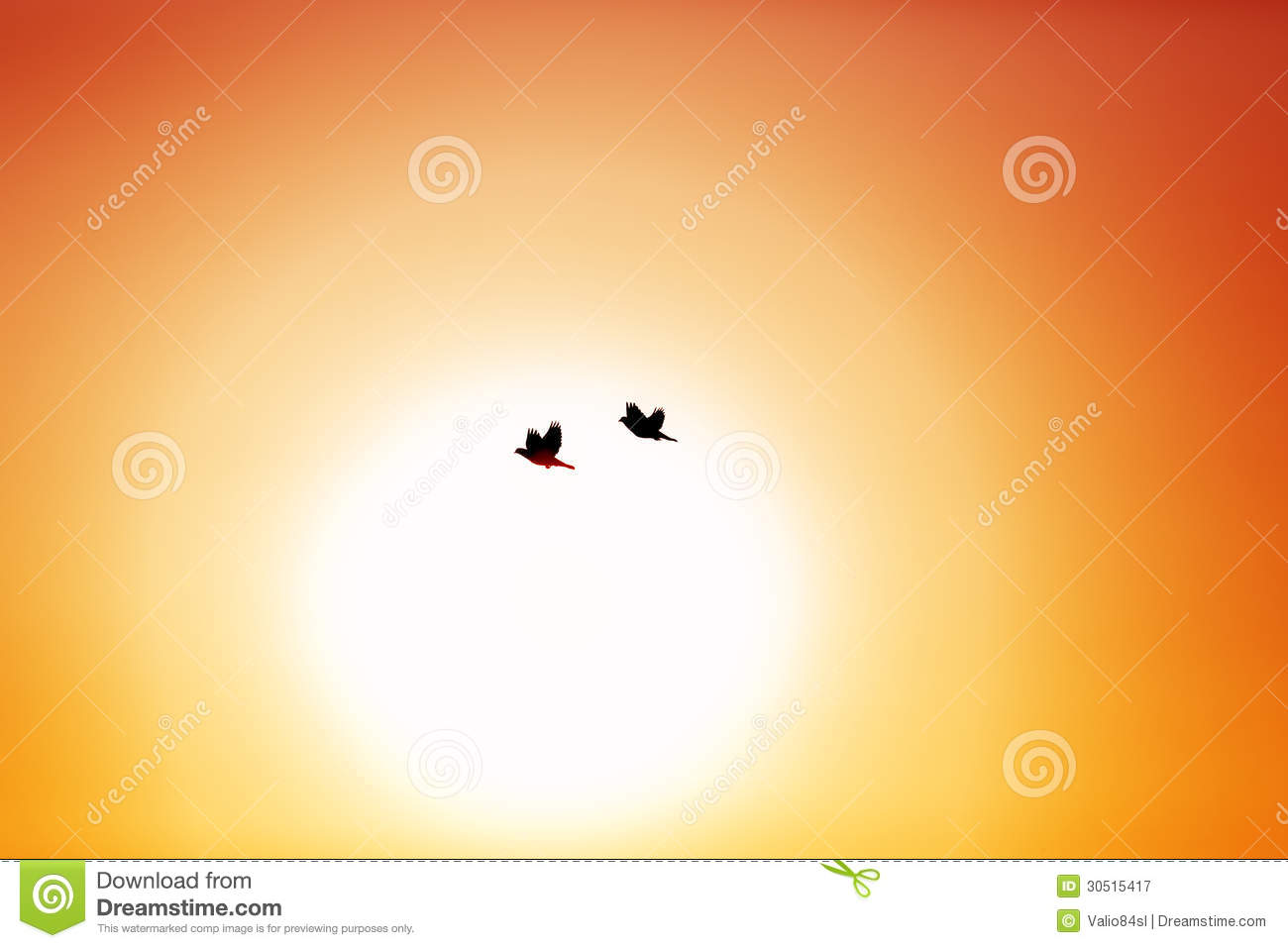 Royalty Free Stock Photography Flying Birds Sky Doves Silhouette Image...