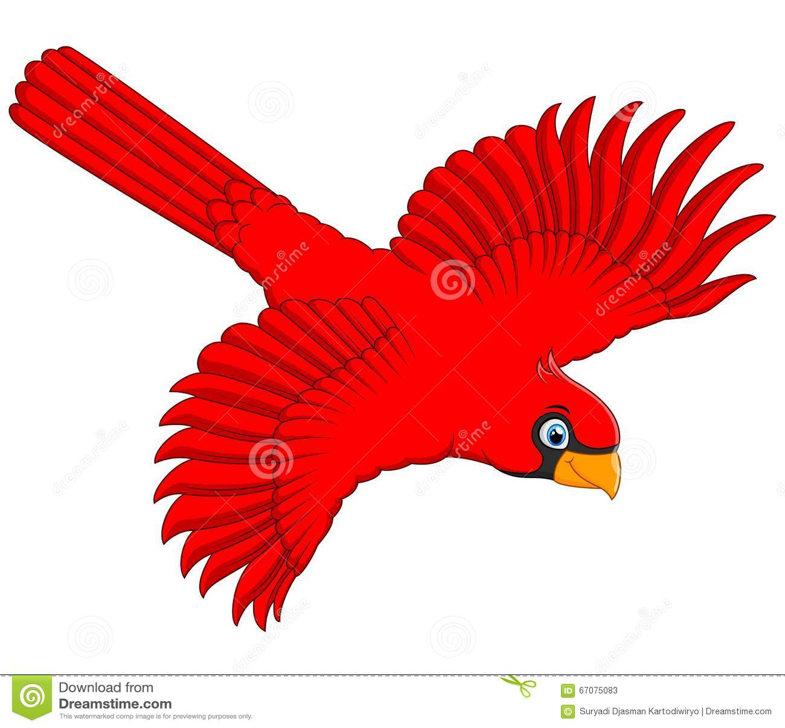 Flying Cardinal Cartoon Stock Vector Illustration Of Beak 67075083
