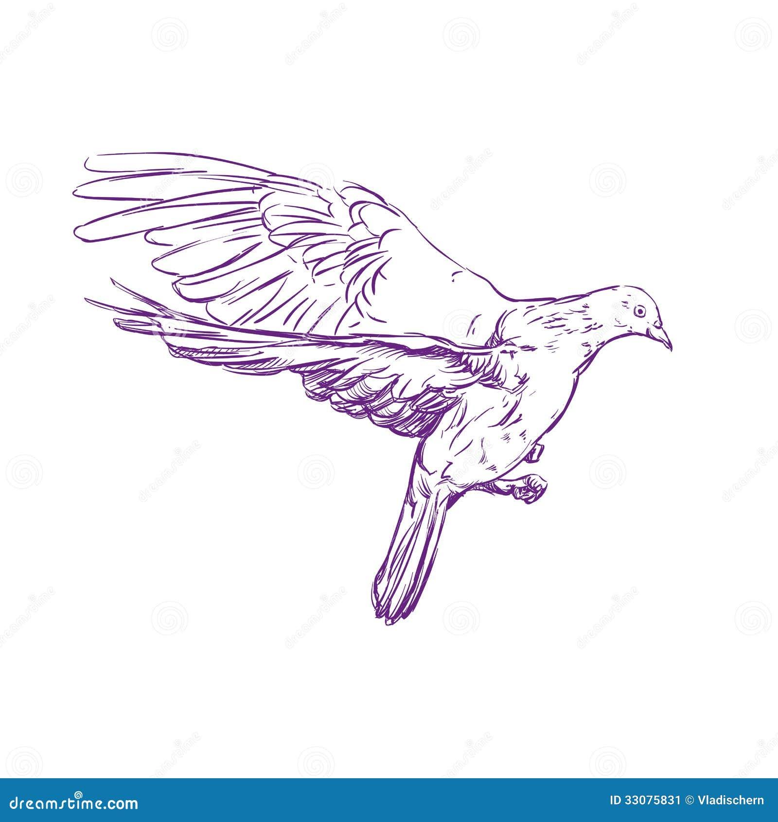 Тату голуби эскизы на руке