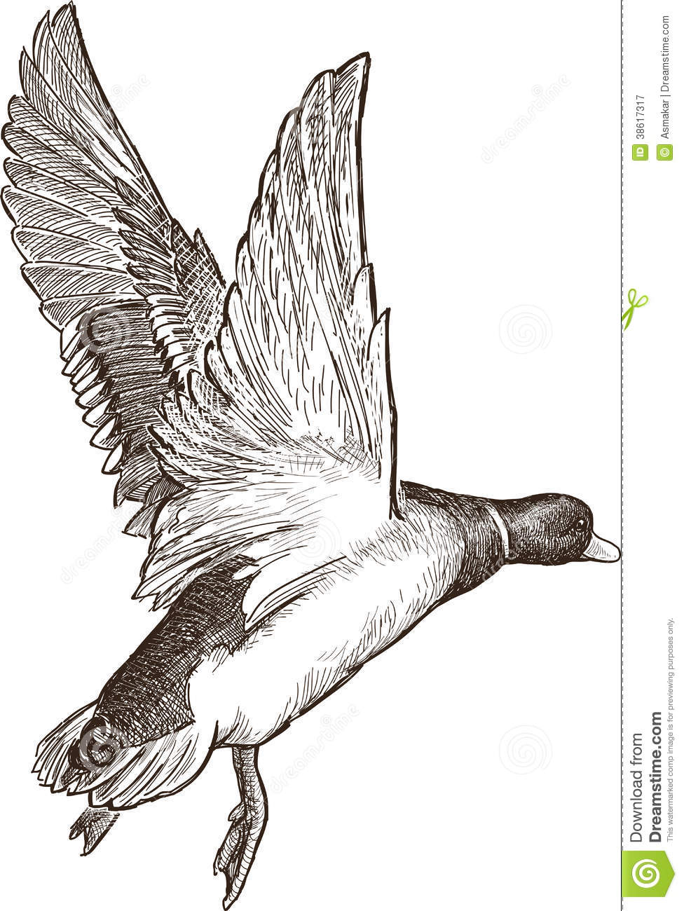 the wild duck thesis Free essay: illusions and realities in ibsen's plays the wild duck and ghosts in ibsen's the wild duck, illusions and reality are set into a conflict within.