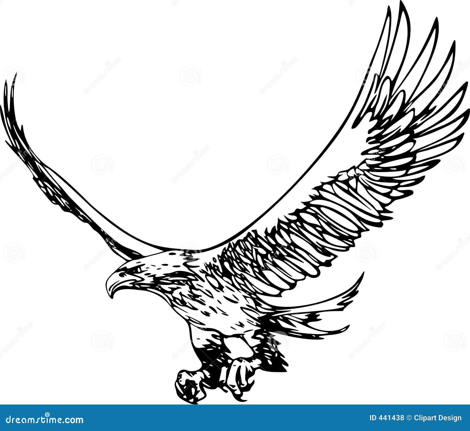 flying eagle stock illustration illustration of hunt flying 441438