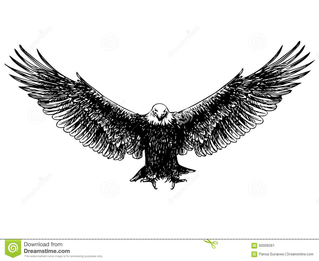 Flying eagle hand drawn stock vector. Image of patriotism ... American Eagle Clipart Black And White