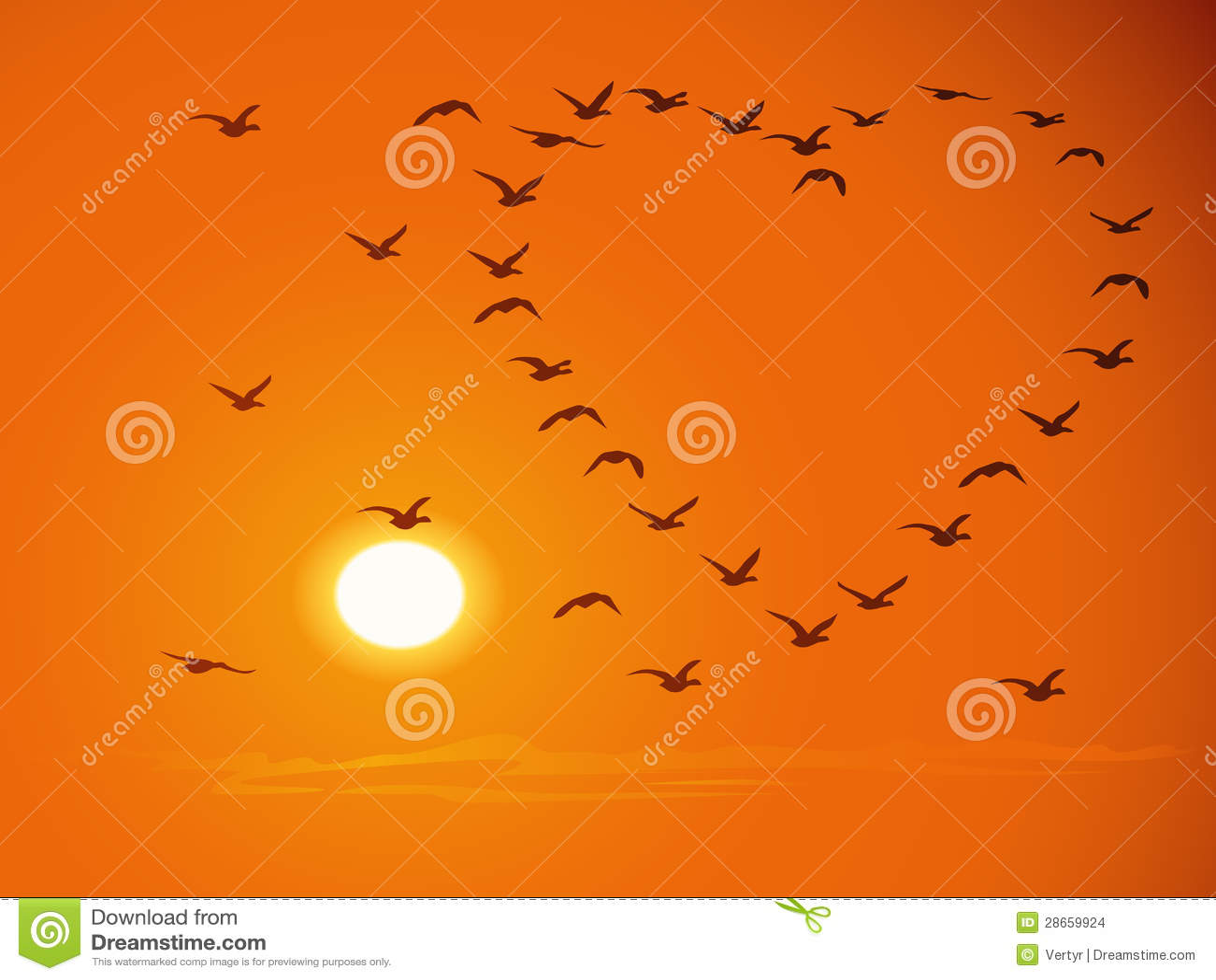 Flying flock birds against sunset for valentines d