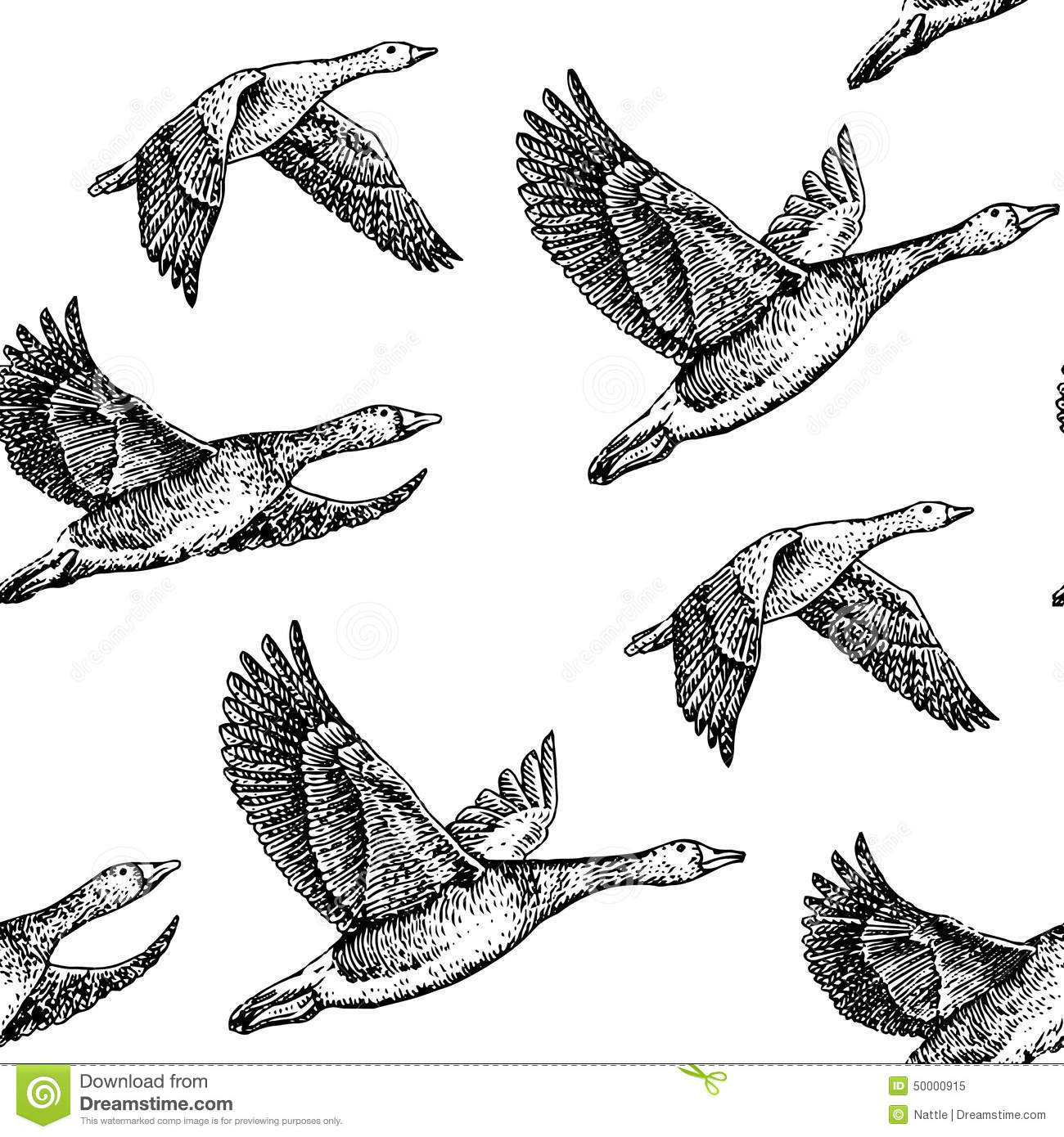 Flying Geese Stock Vector Image 50000915