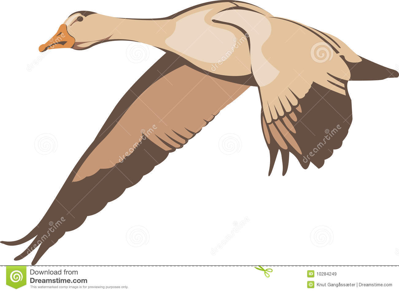 Flying Goose Royalty Free Stock Images - Image: 10284249