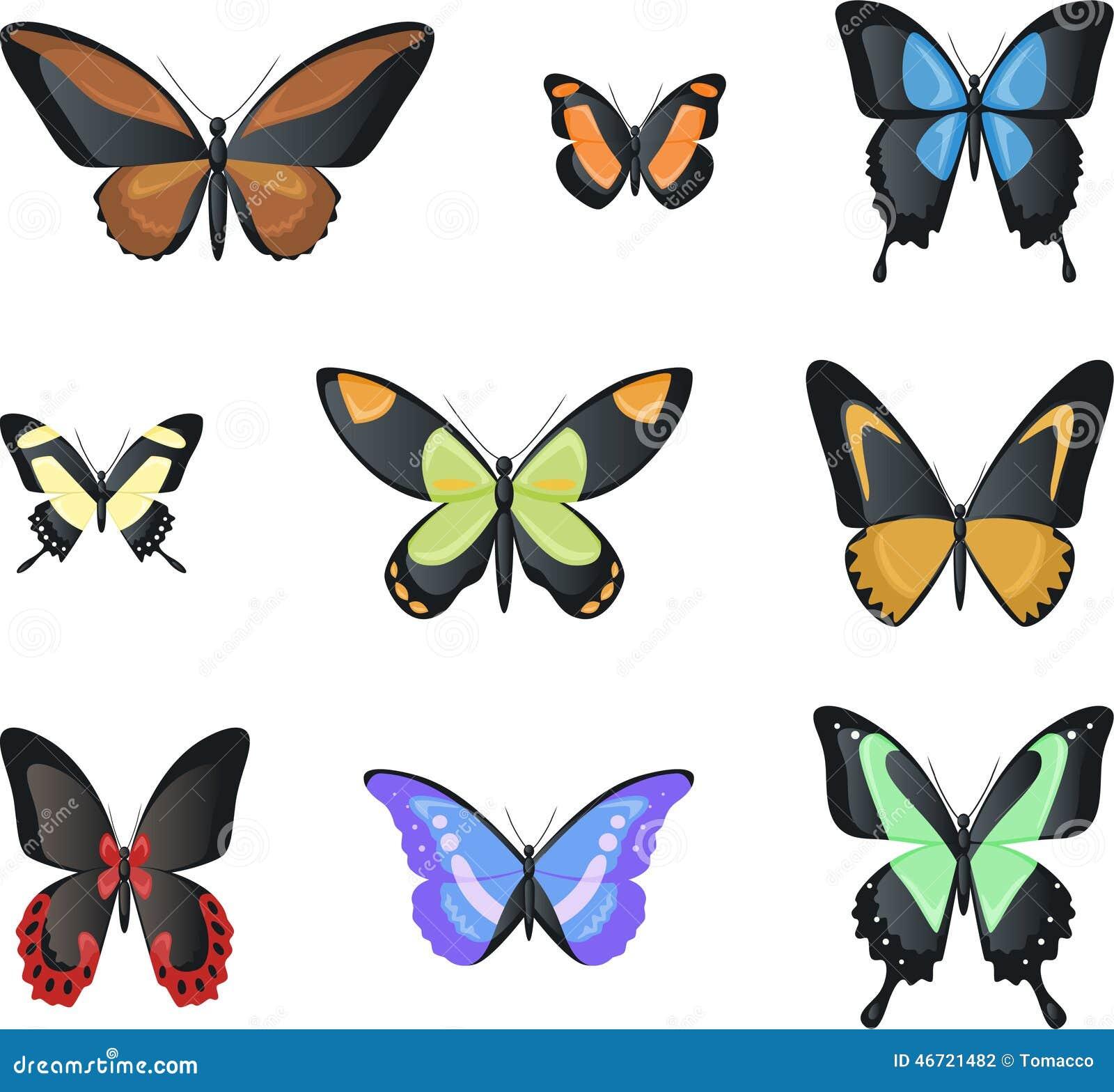 Flying Malachite Morpho Butterfly Invertebrate Arthropod Insect Stock ...