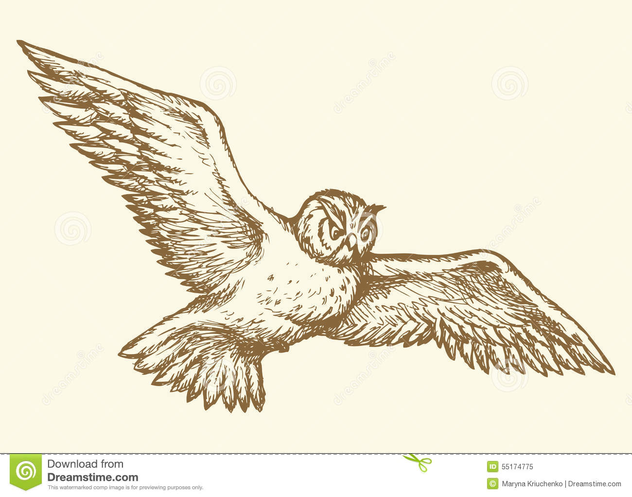 flying owl vector drawing
