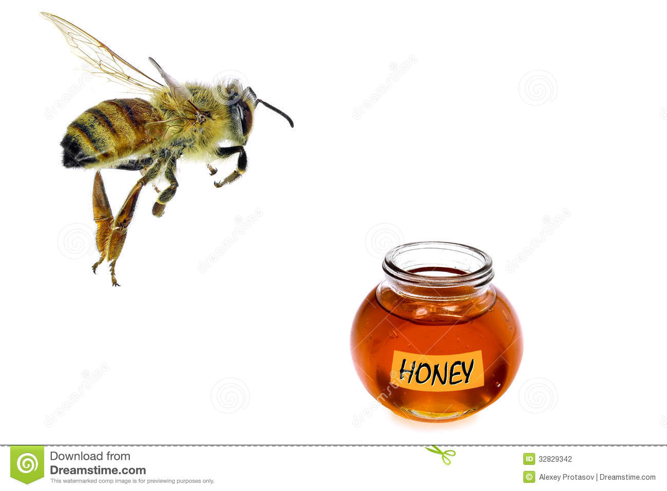 flying to honey stock photography image 32829342 Black and White Bee Vector Bee Outline Vector