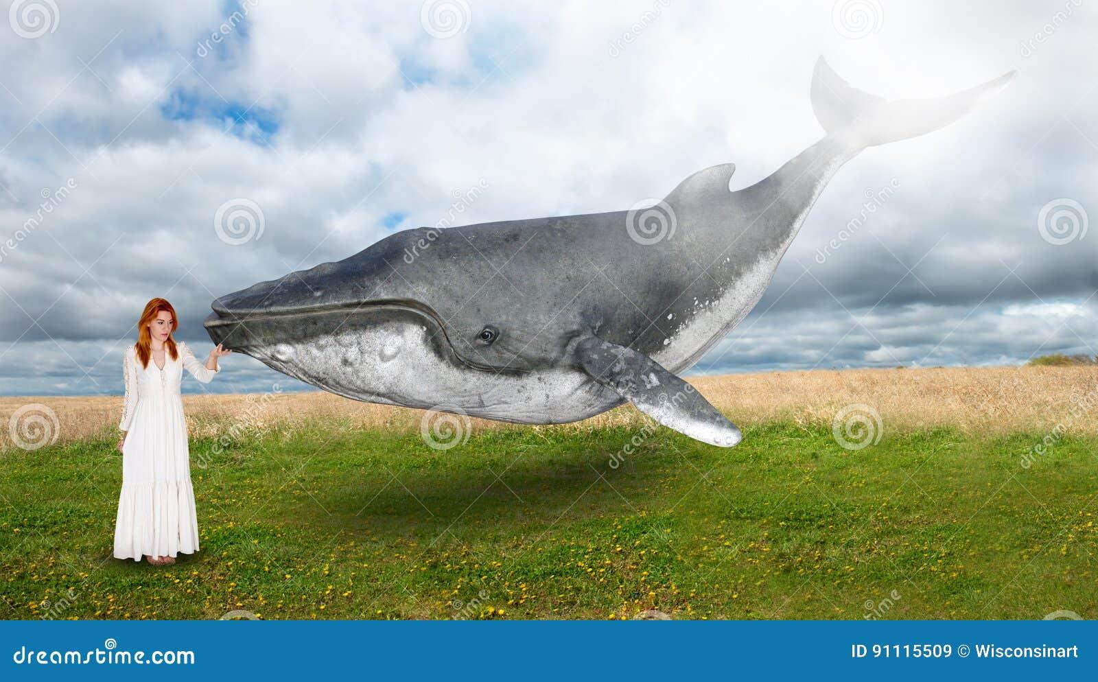 Flying Whale Peace Hope Inspiration Stock Illustration