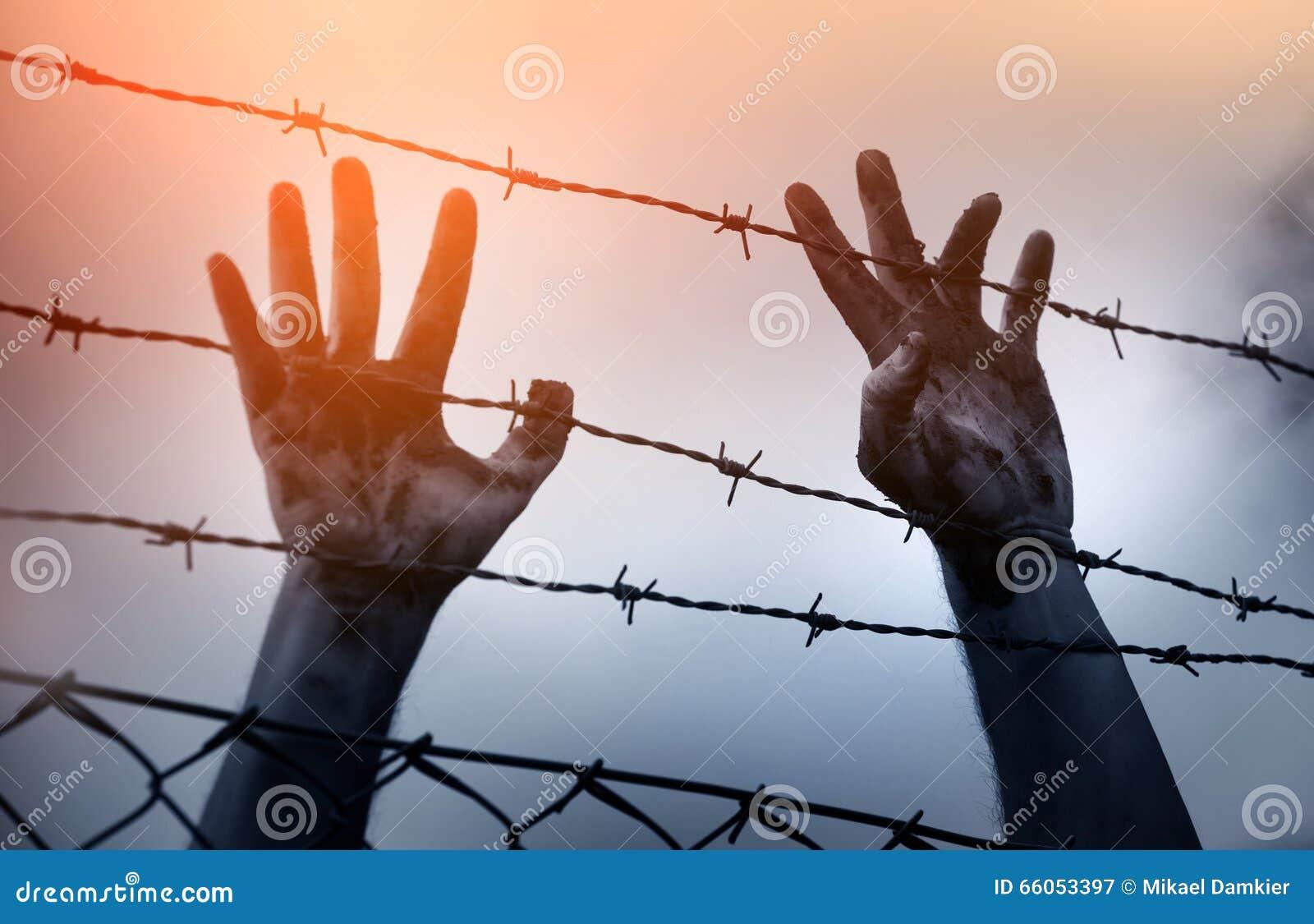 Flyktingmän och staket