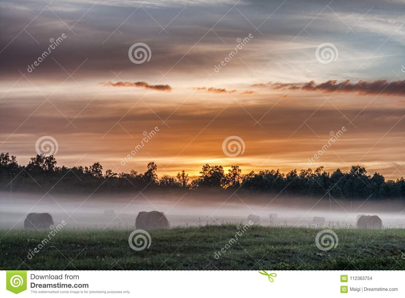 Download Fog Belt on the meadow stock photo. Image of natural - 112363754