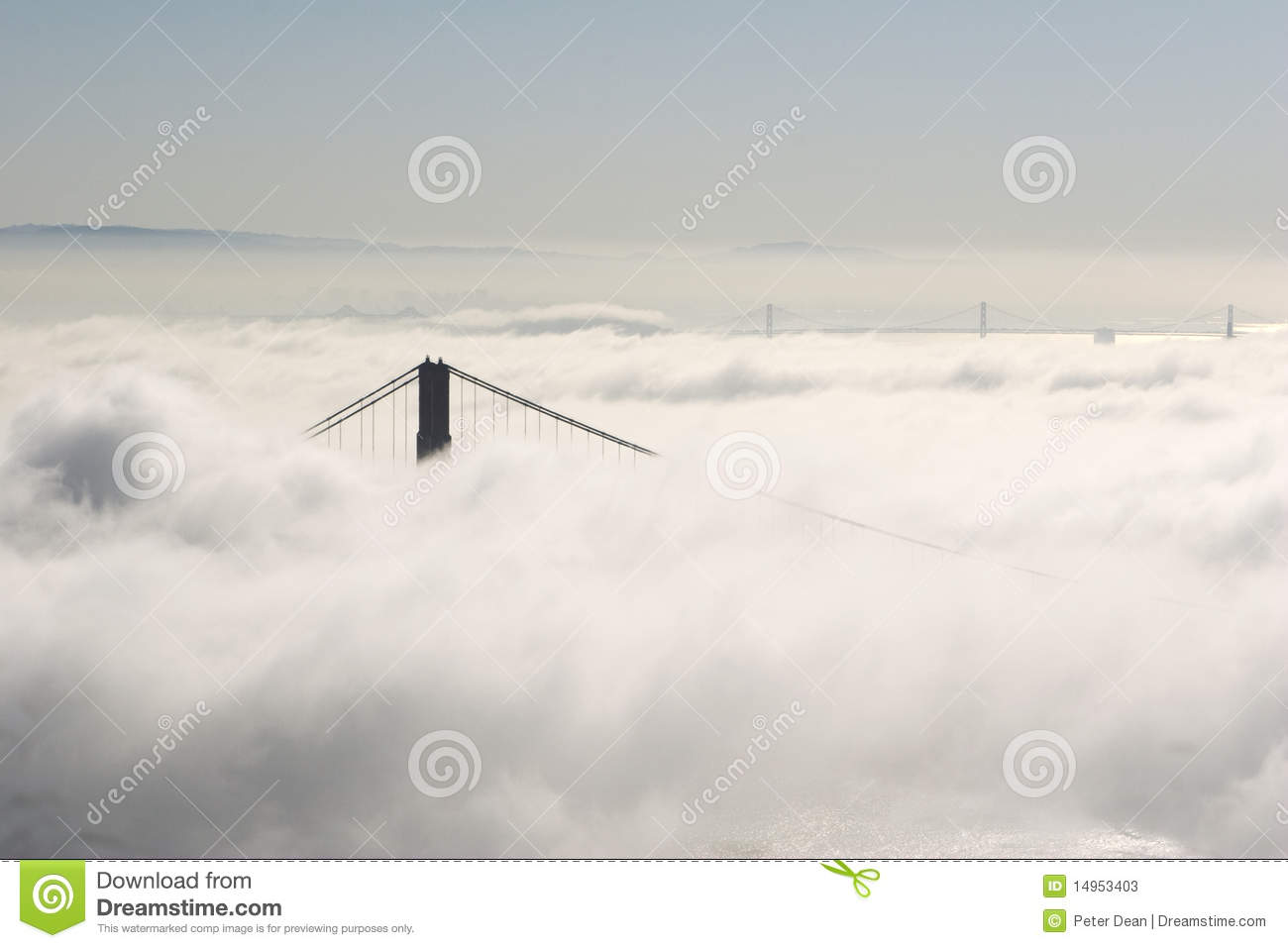 Fog Bridges