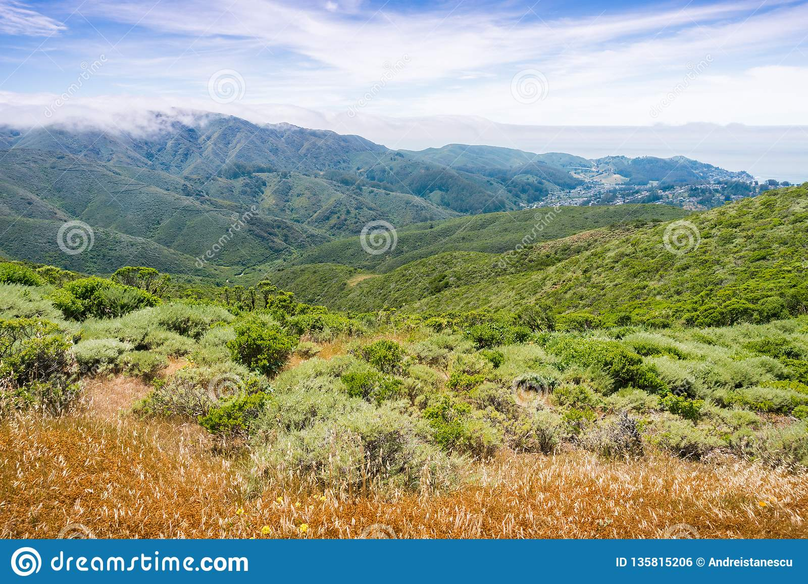 Fog covering the verdant hills and valleys of Montara mountain McNee Ranch State Park, California