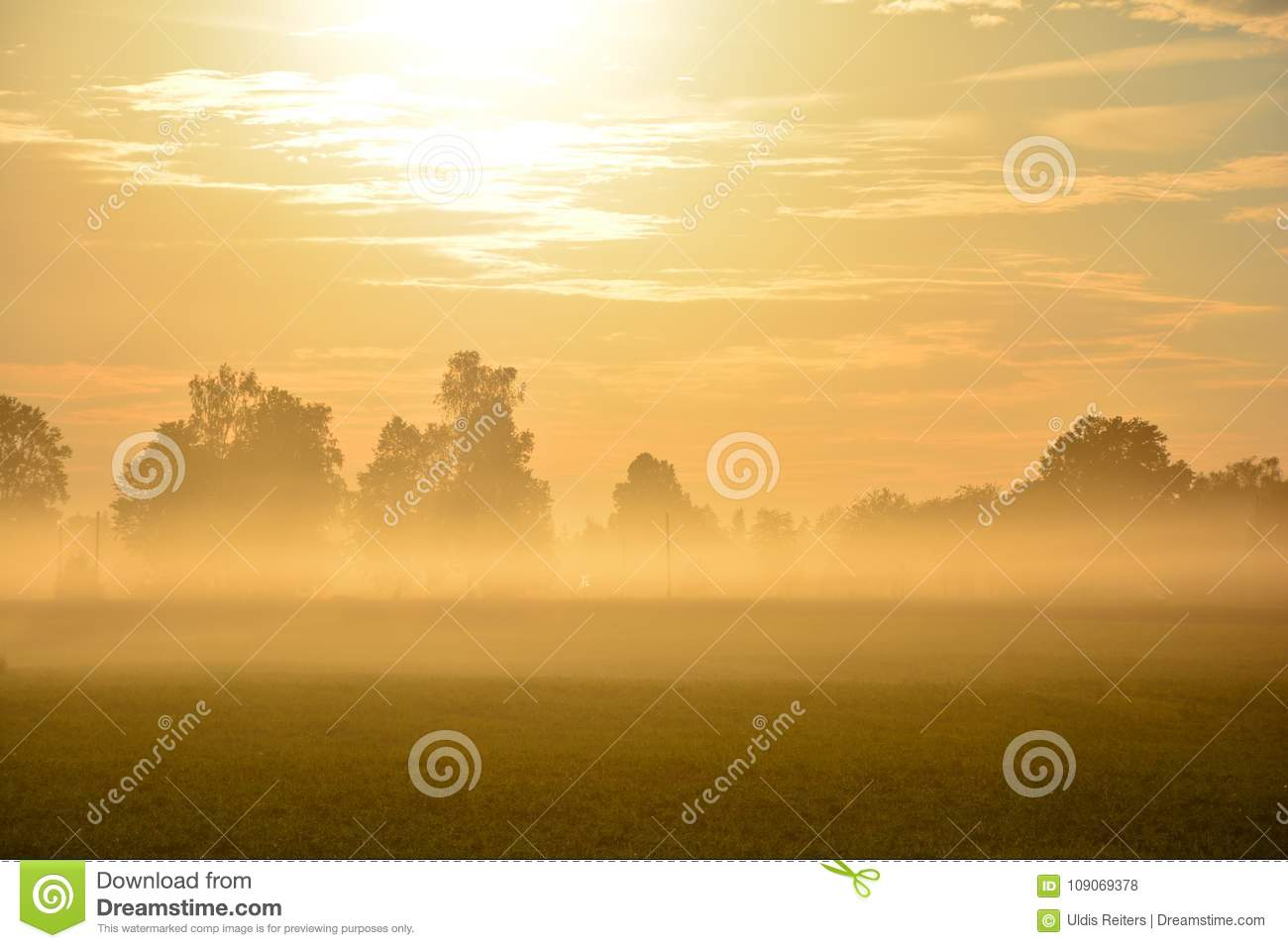 Fog in field in sunset time